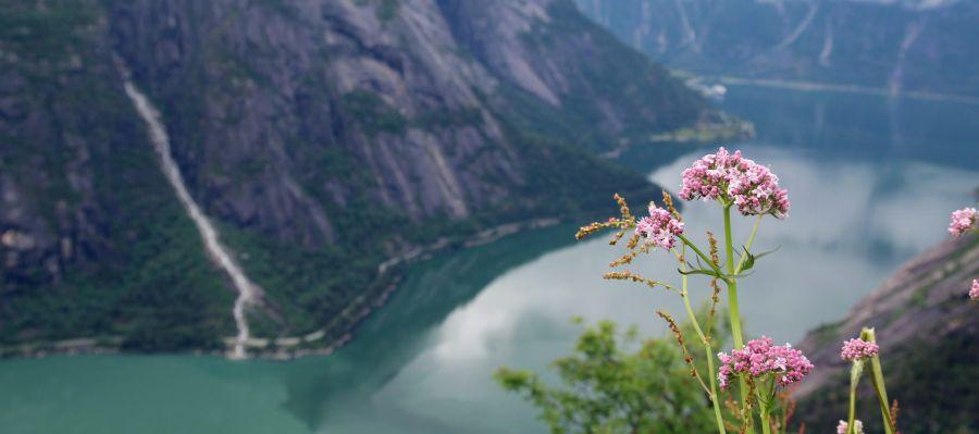 Impression von Eidfjord