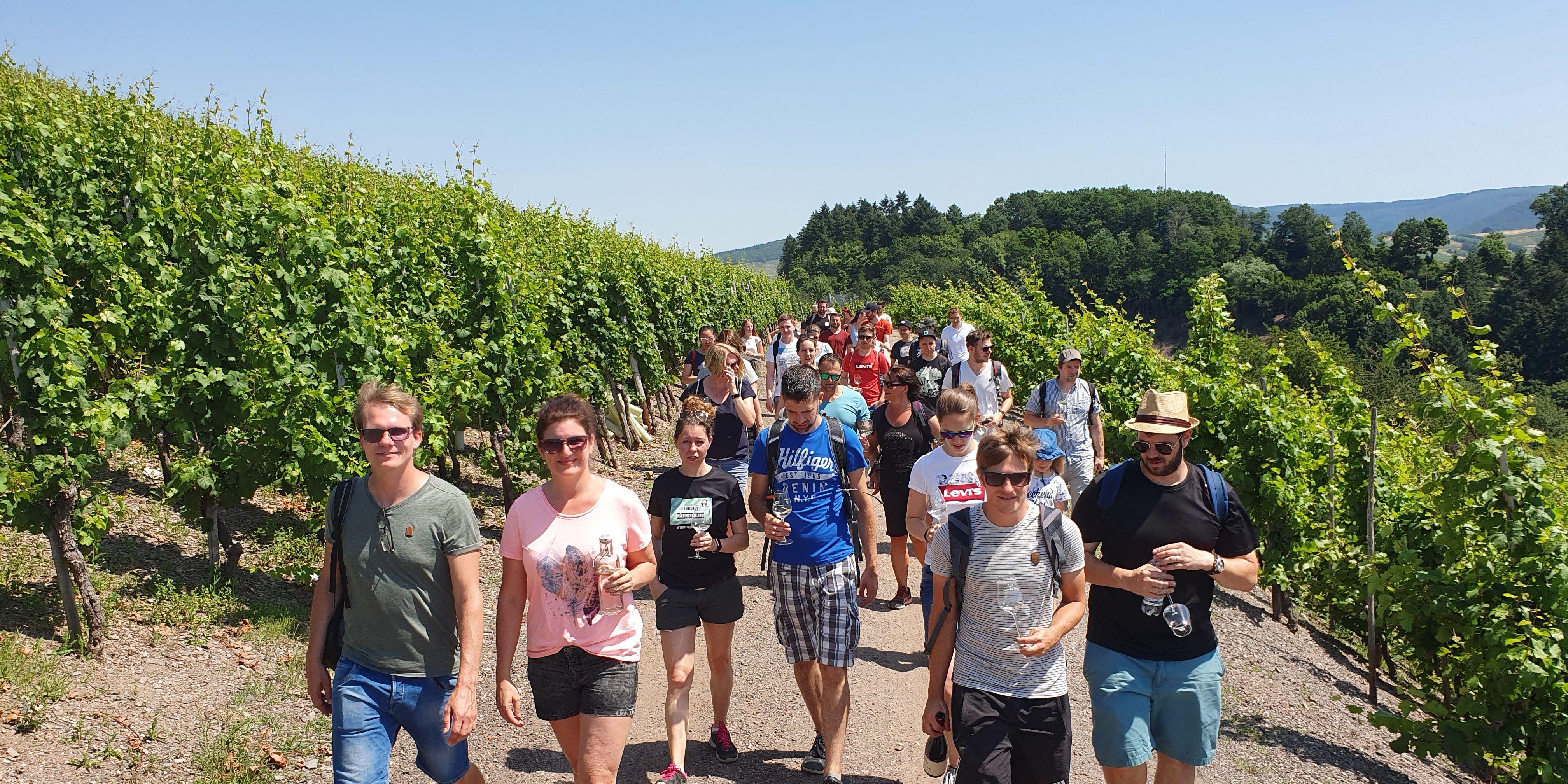 Wanderung durch die Weinberge von Saarburg