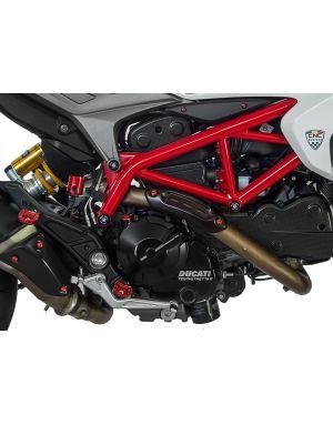 "Easy"" rider pegs kit Ducati Hypermotard 821"