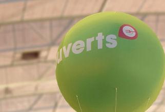 Bedrukte reuzeballonnen