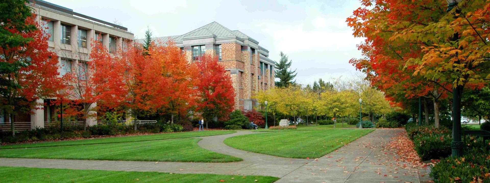 Navigating Title IX Changes