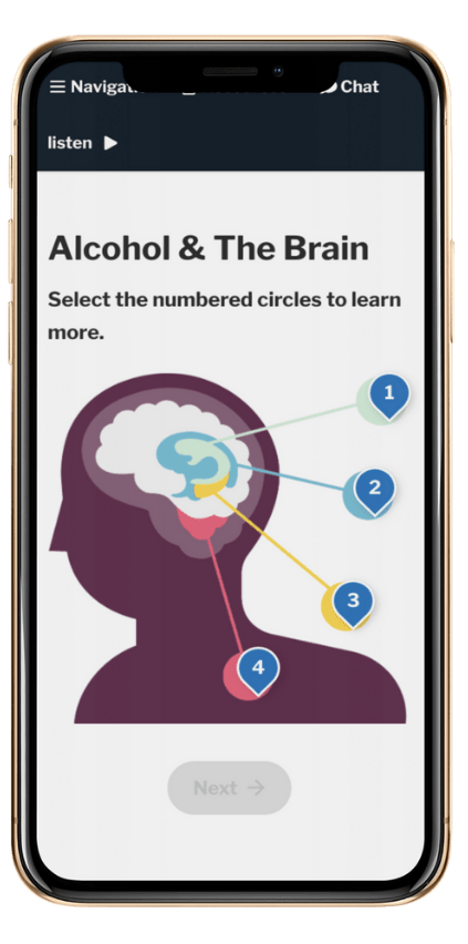 Alcohol and the Brain Course Screenshot