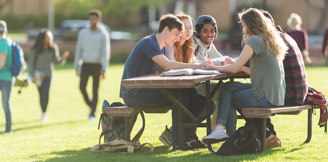 students-outside-studying-2.jpg