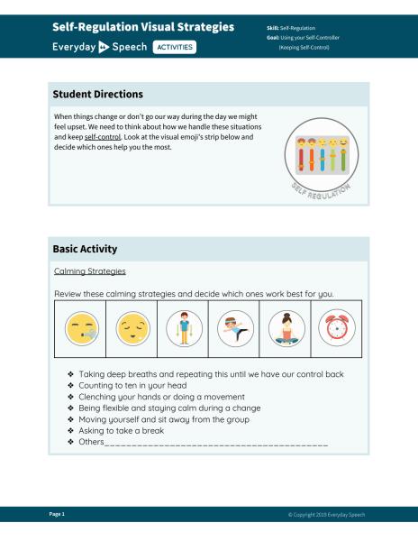 Self-Regulation Visual Strategies