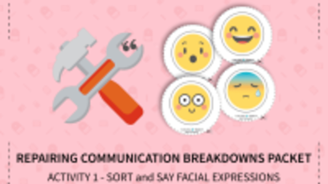Sort and Say Facial Expressions
