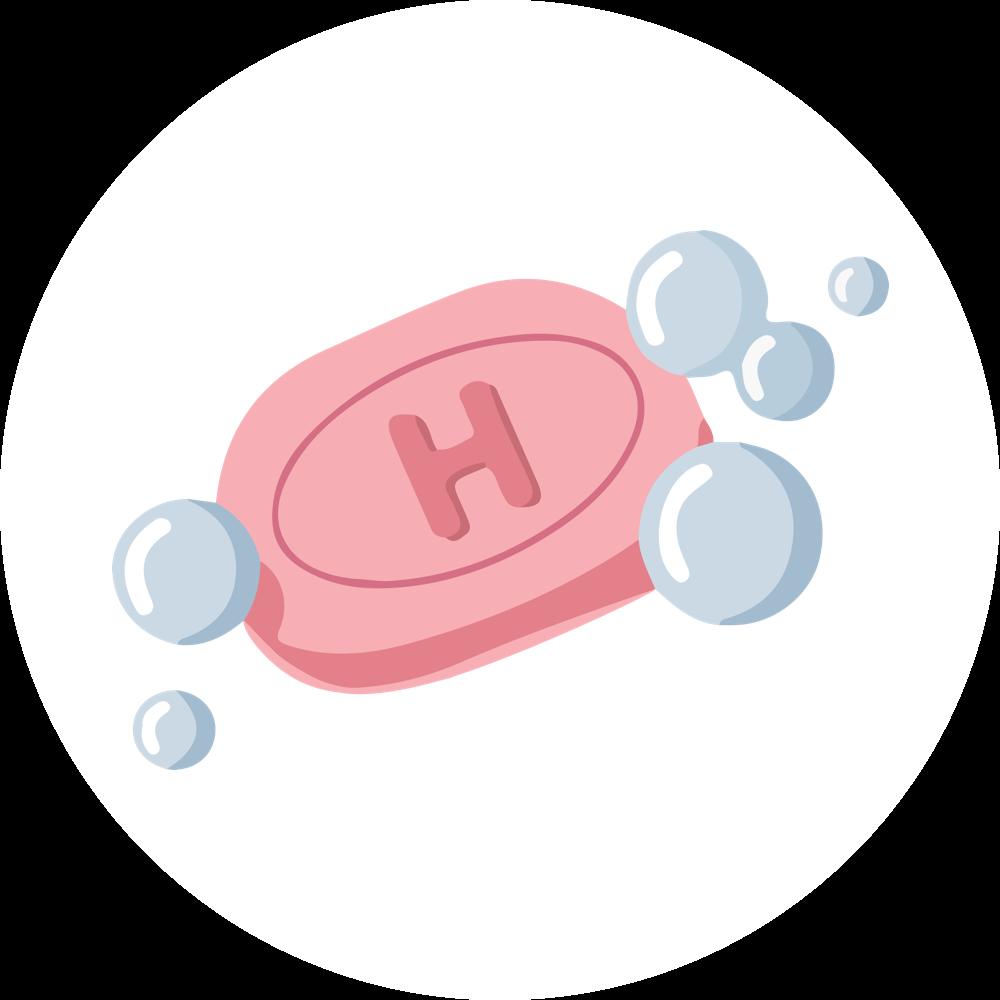 Understanding Hygiene