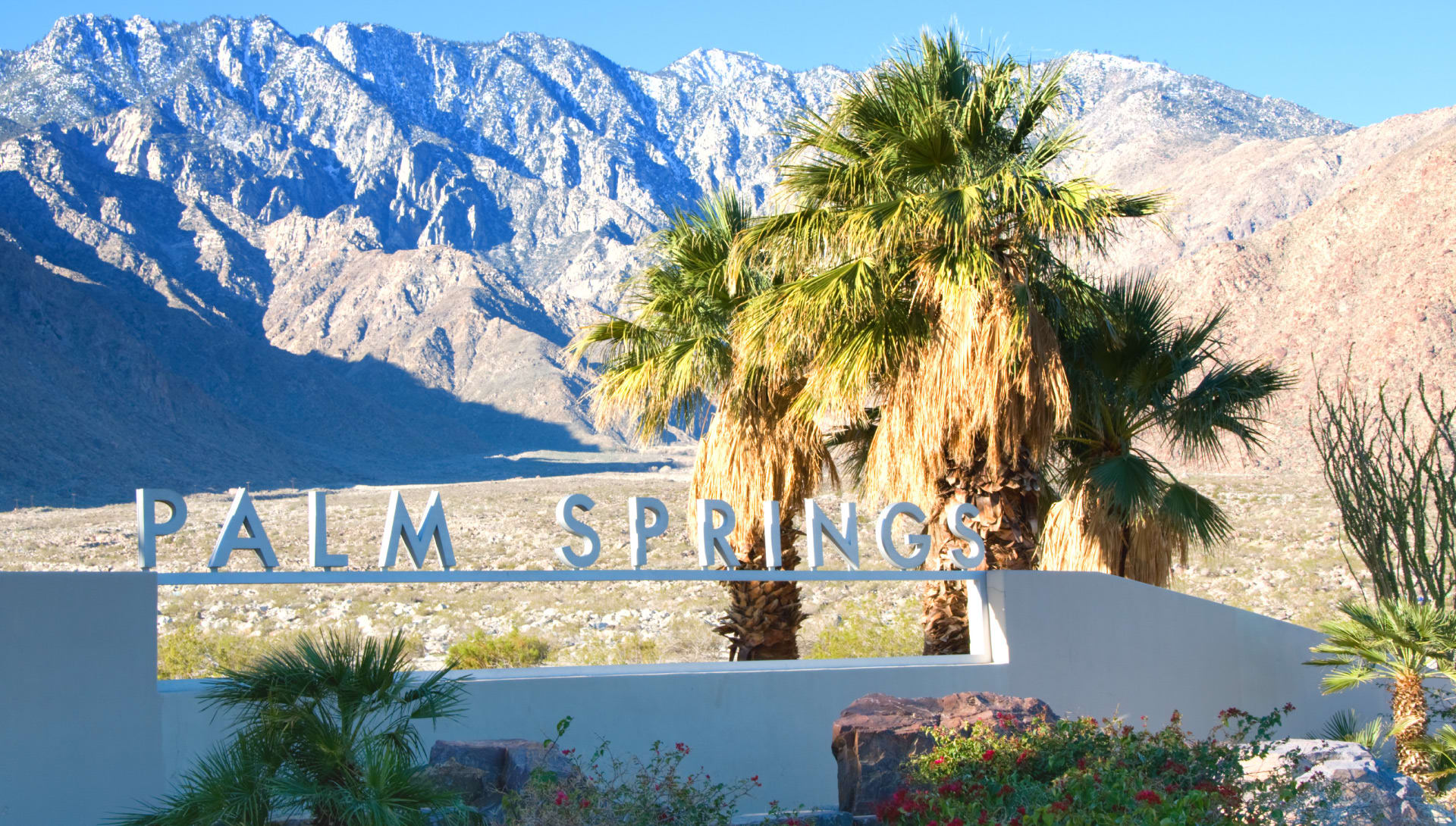 Don't Miss These Top Things to Do on Your Next Trip to Palm Springs