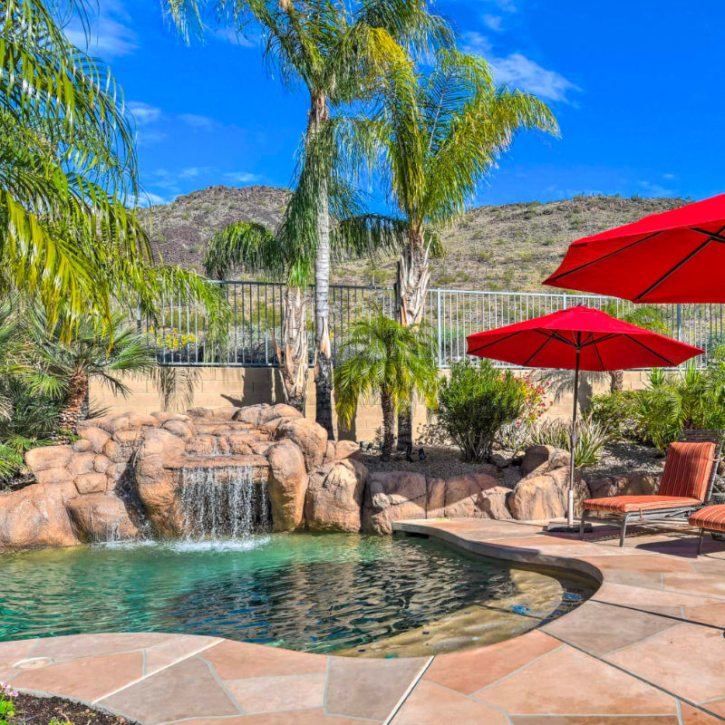 Vacation rental home with a pool and waterfall, umbrellas, and palm trees in Scottsdale, Arizona