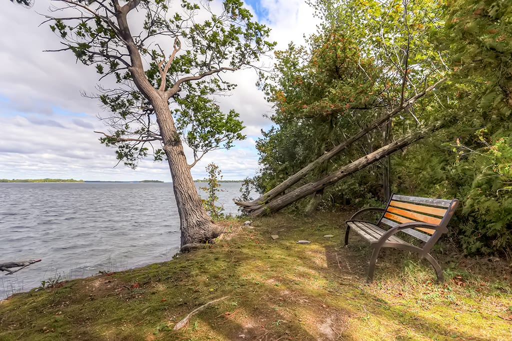Take a seat on this bench and look out over the water.