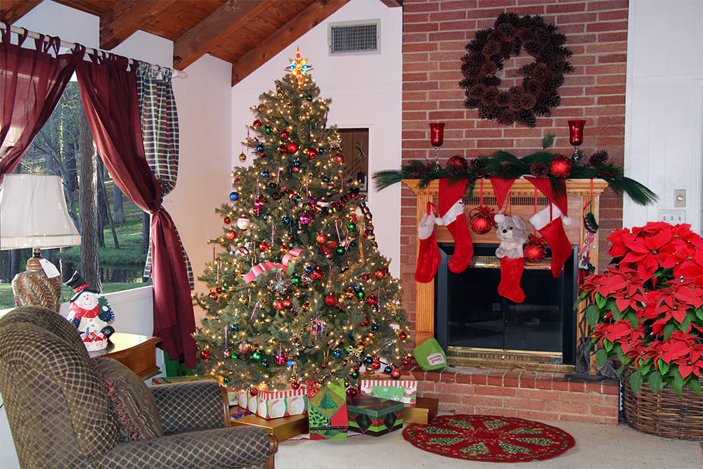 You'll love spending Christmas at the lake!