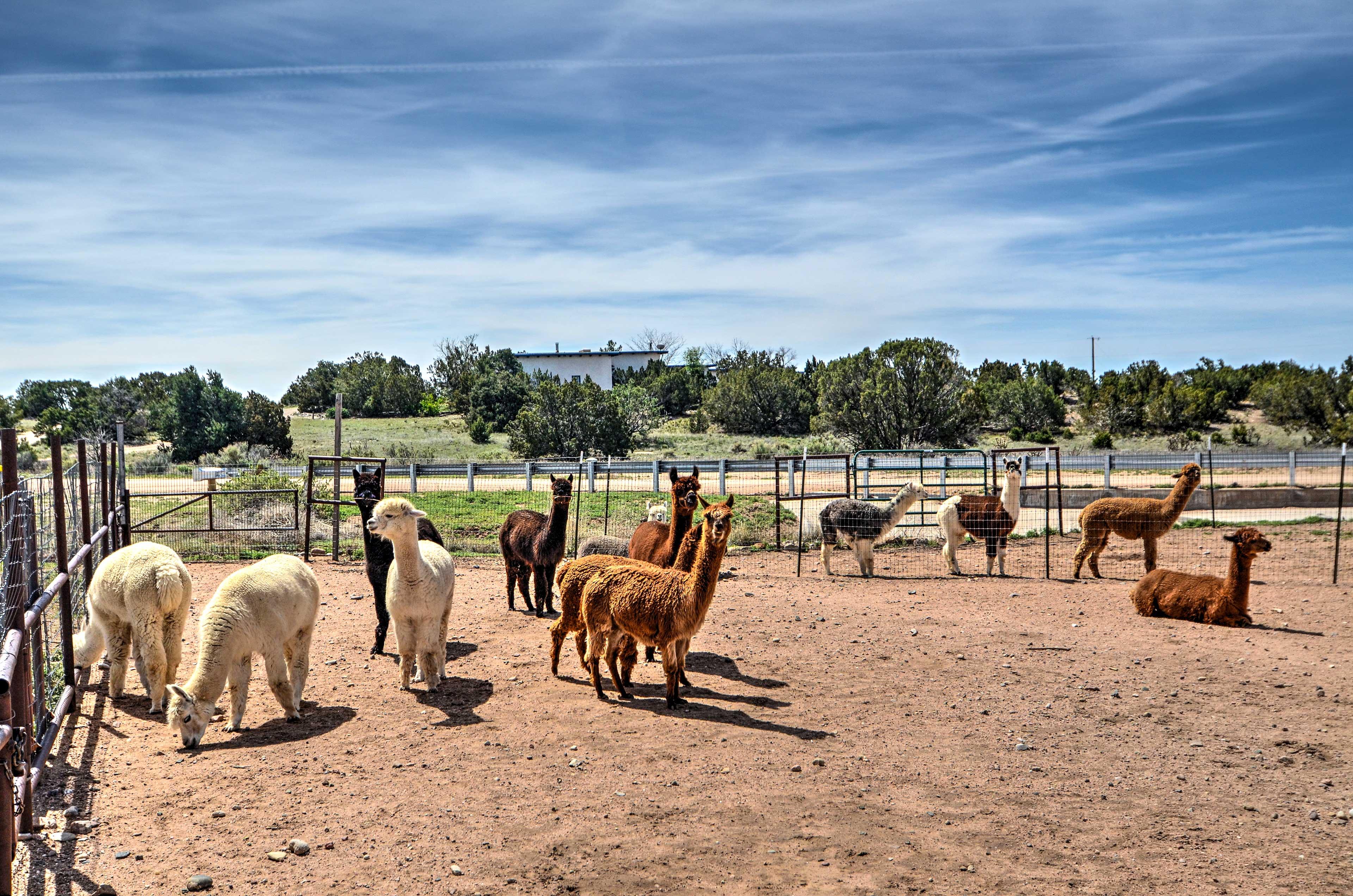 Farm On-Site