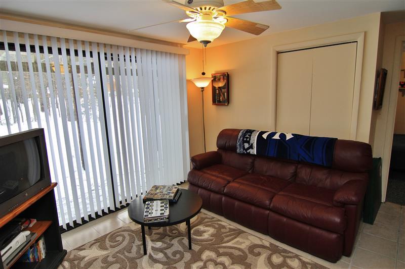 Lower-Level Den   Sleeper Sofa