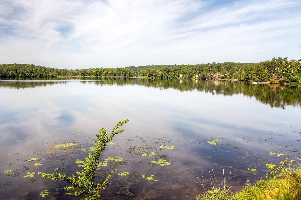 Rice Lake | On-Site