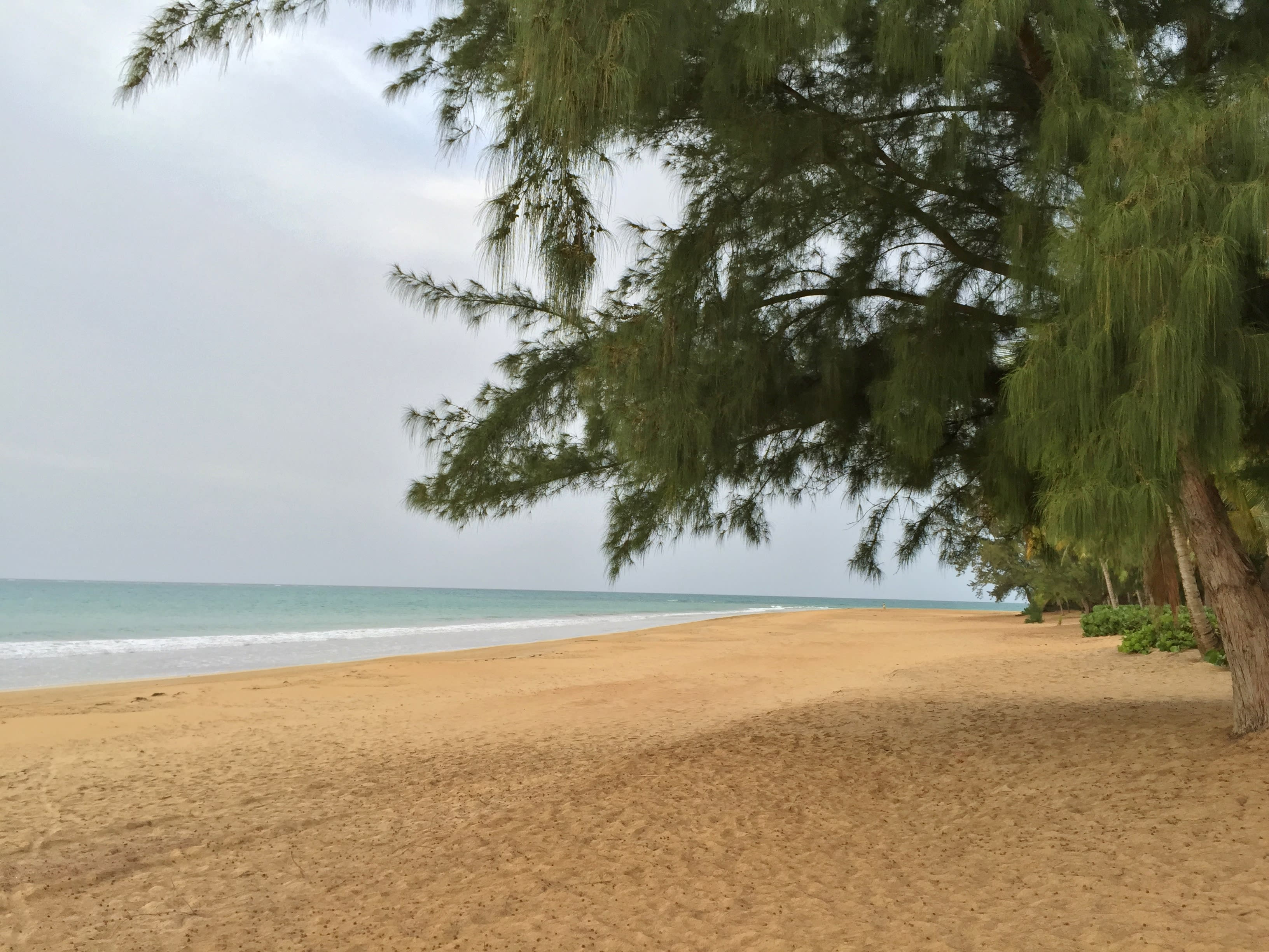 Private Beach | 24/7 On-Site Security