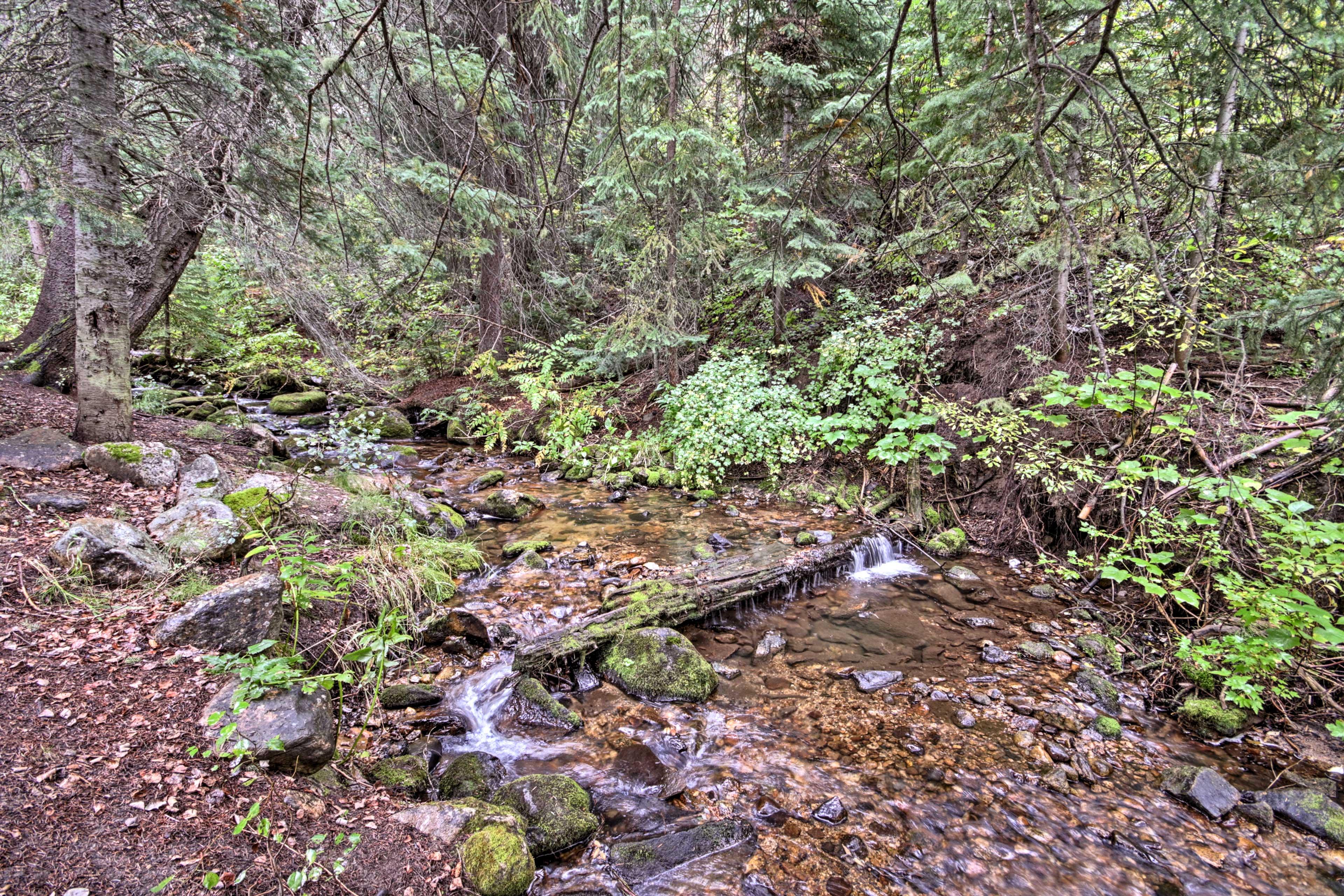 Old Town Hot Springs (4.3 Miles) | Black Sulphur Spring (5.2 Miles)