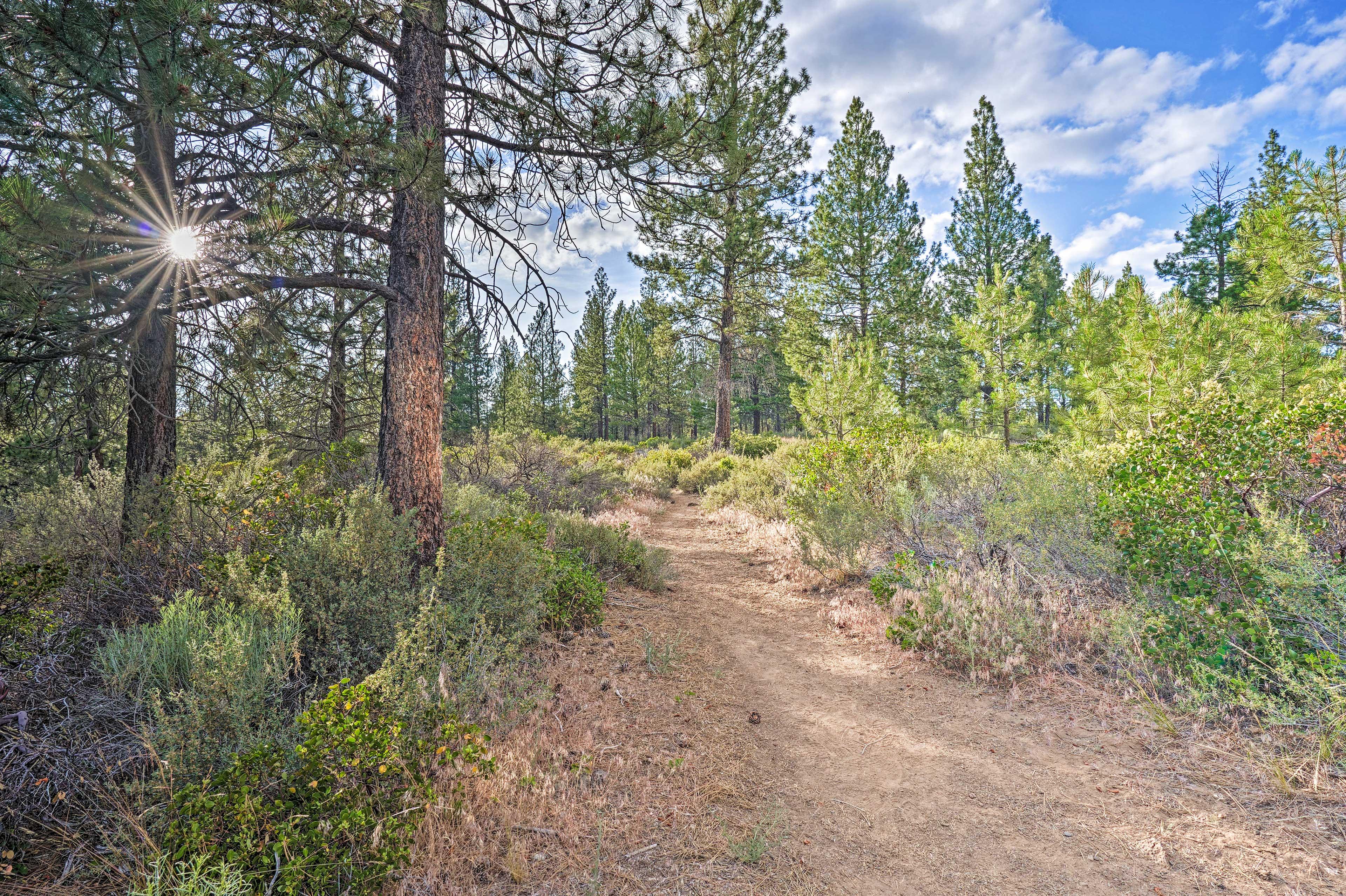 Hiking   Pilot Butte Trail (9.6 Miles)   Tumalo State Park (12.9 Miles)