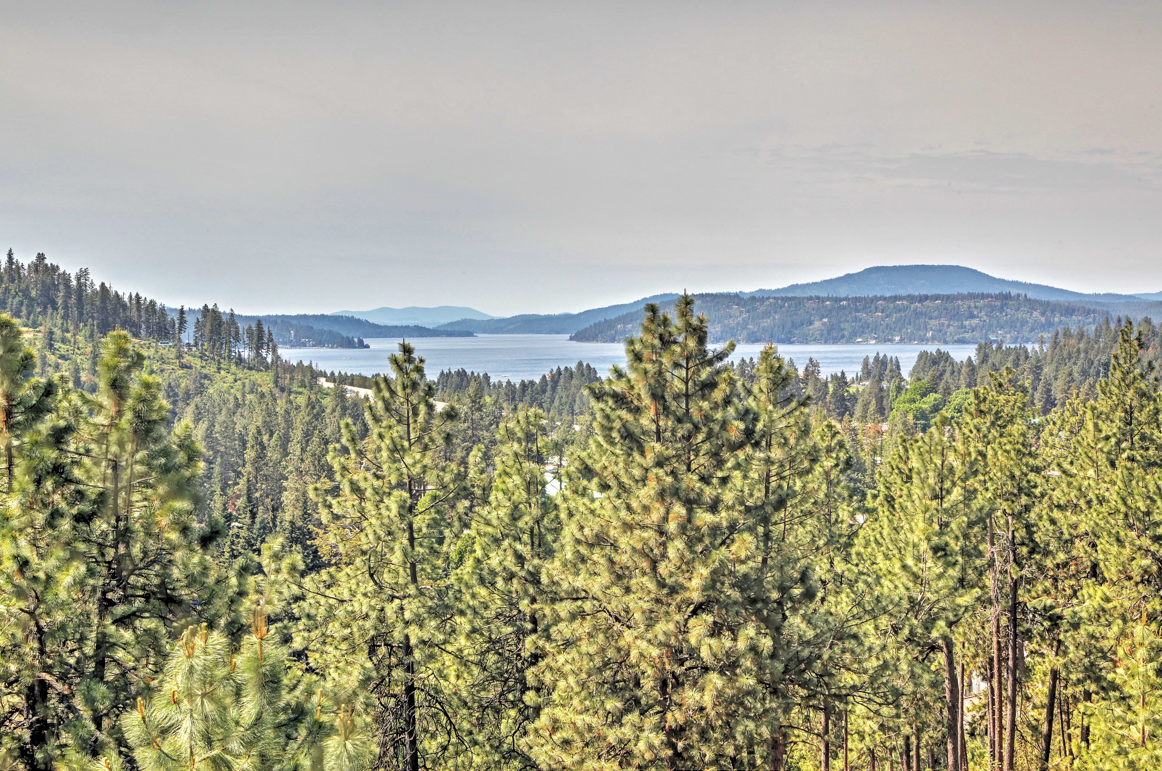 Forever Views makes it easy to watch boats on the lake and nearby wildlife!