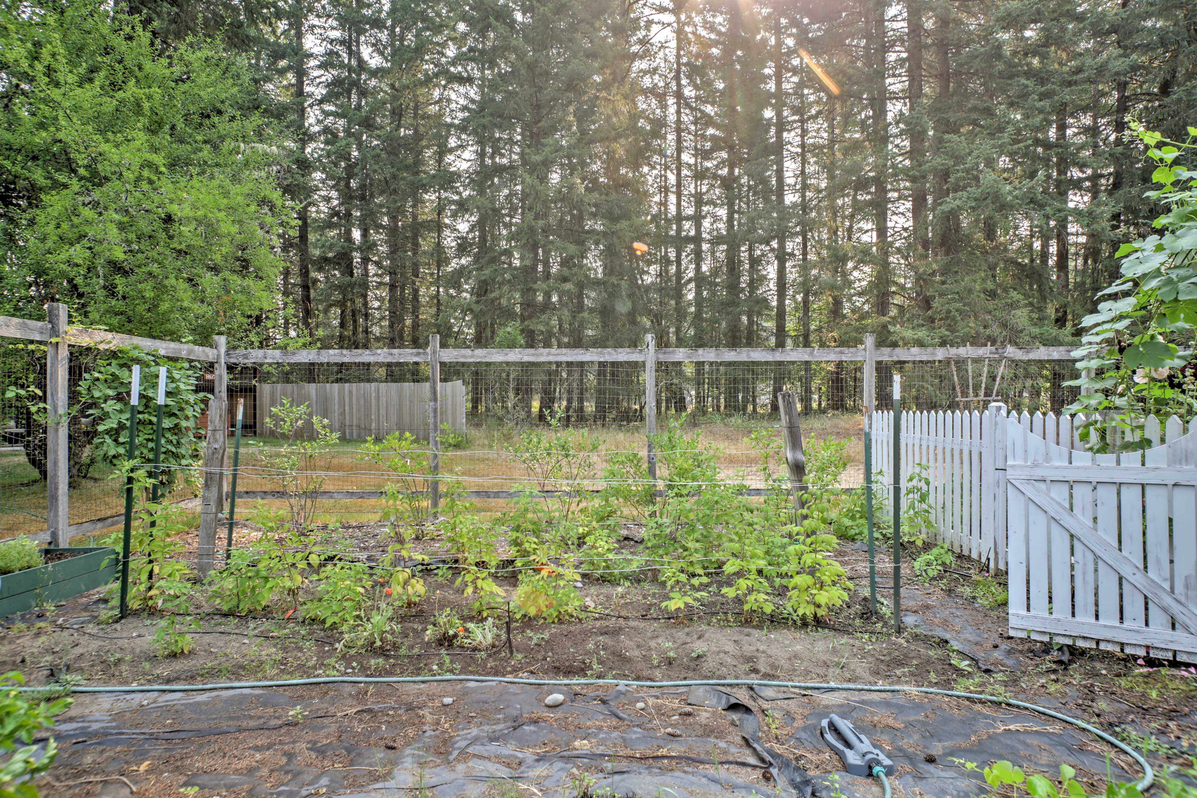 There is even a garden on the property.