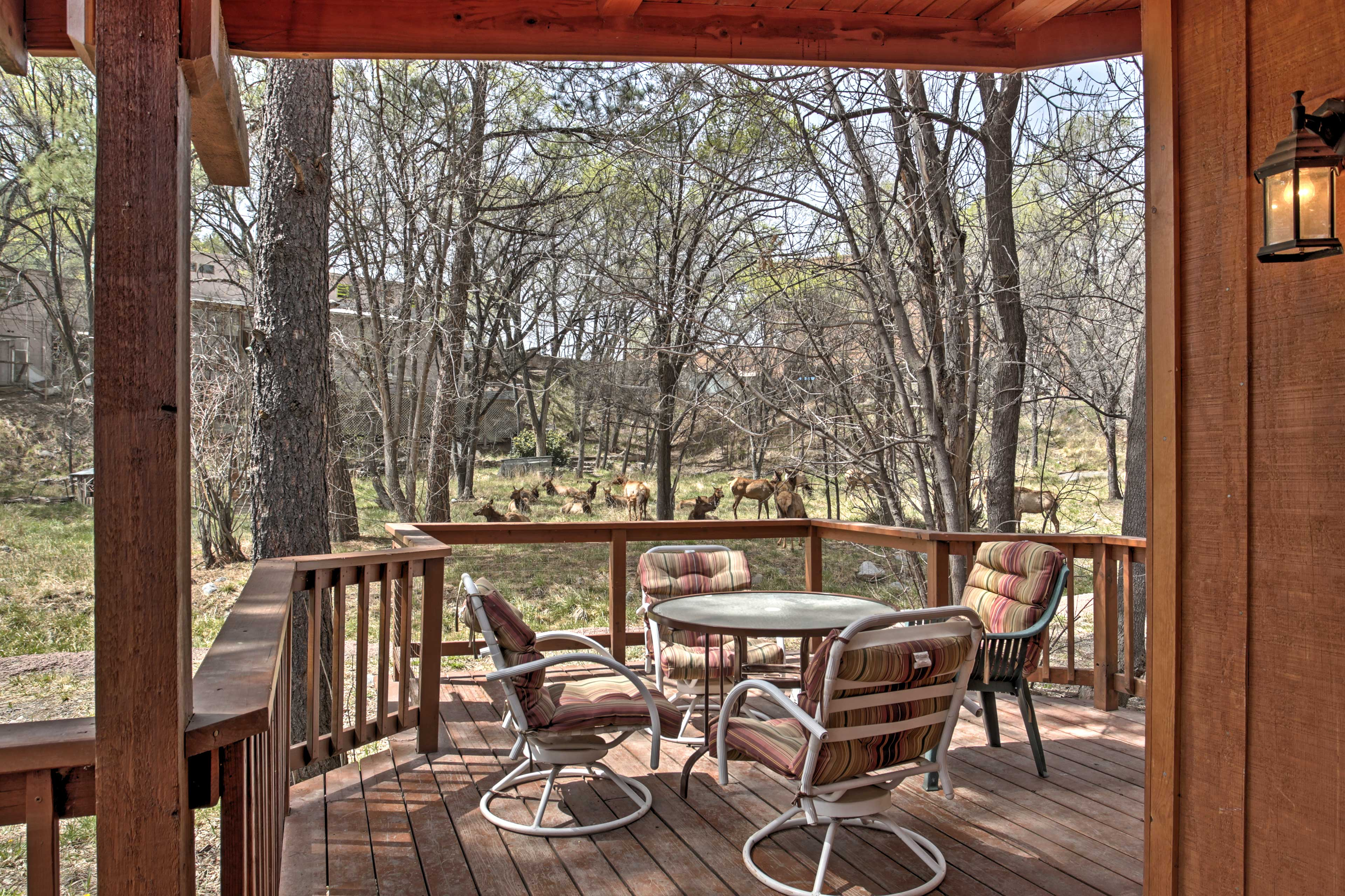 Nestled in the woods, enjoy beautiful views from the large deck.