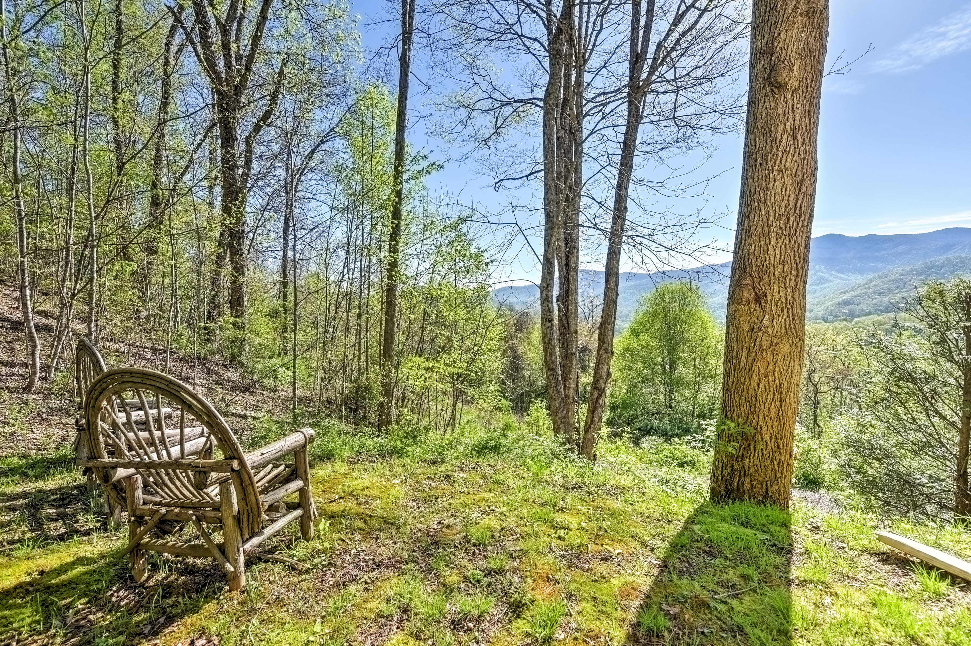 The Pisgah National Forest offers infinite opportunites for outdoor adventure.