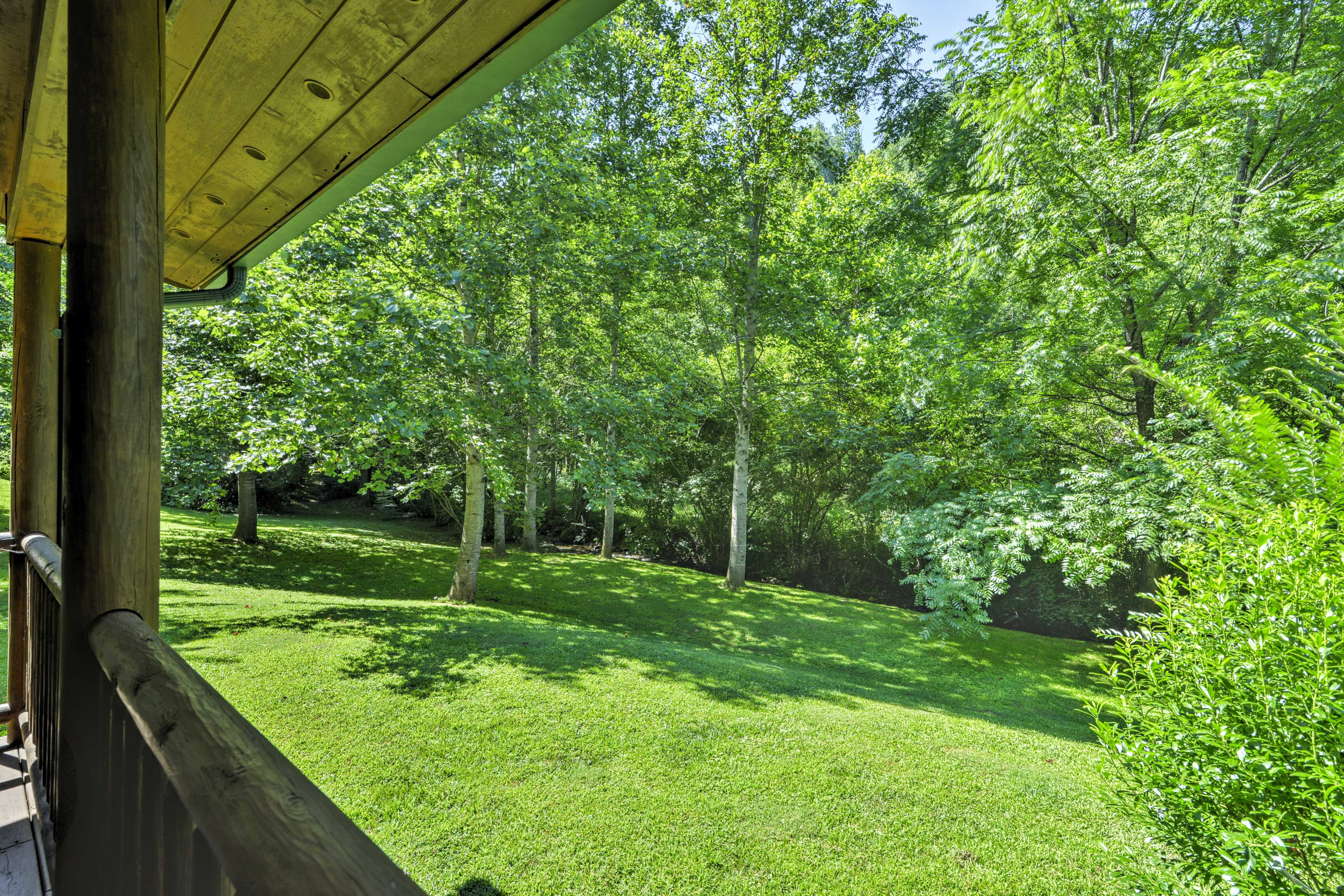You'll love the forest views!