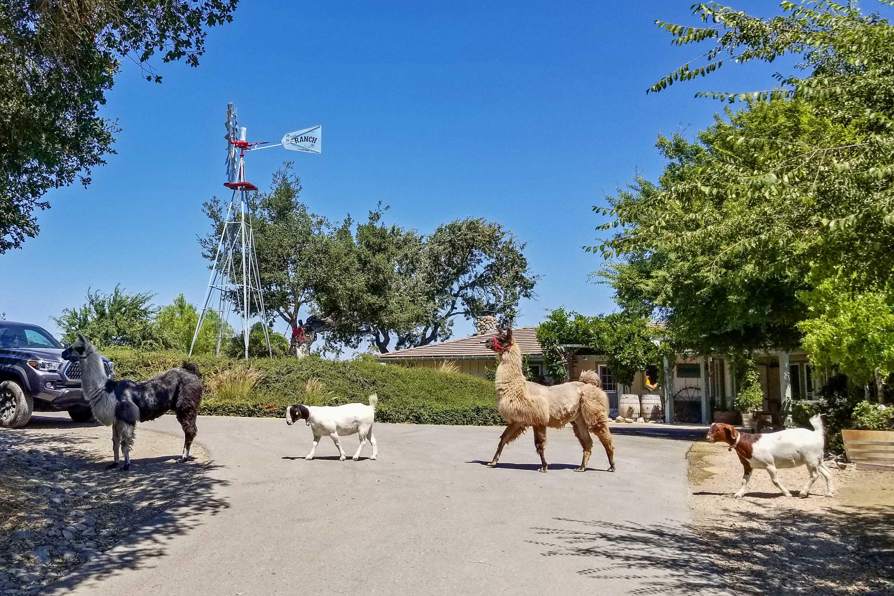 The Ranch at Canyon Ridge