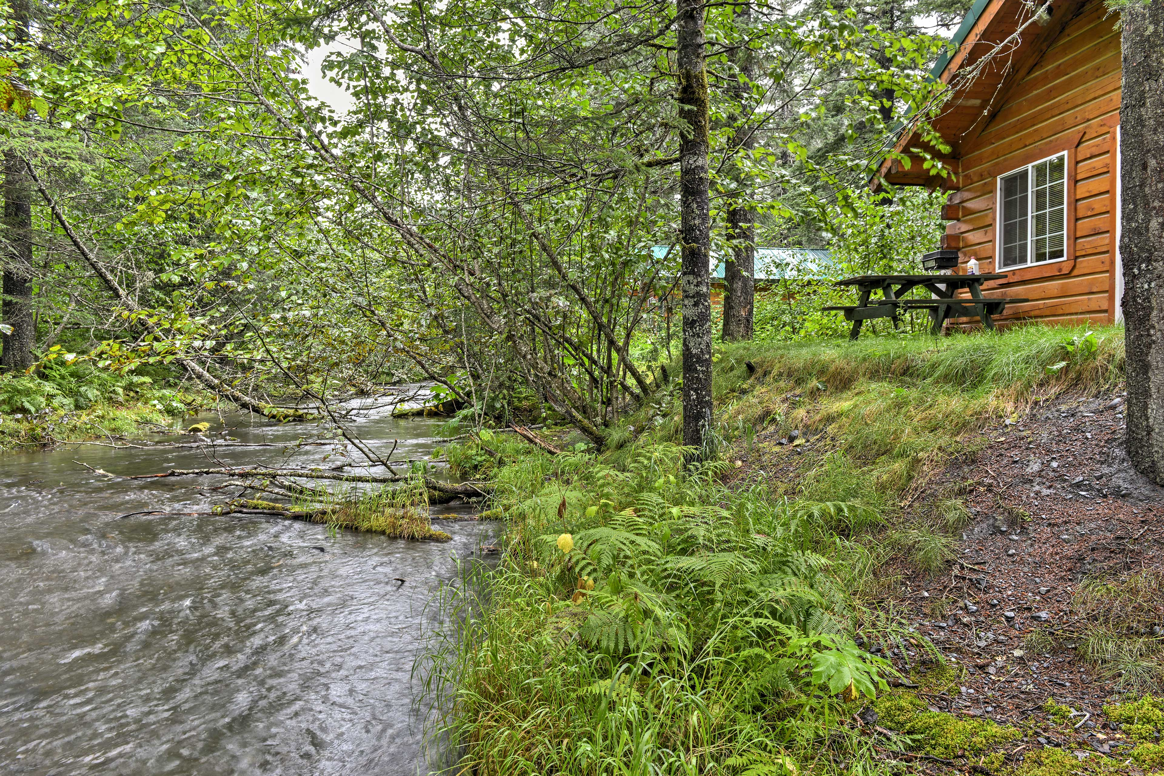 You'll be right next to a creek flowing with bay waters and wild Alaskan salmon.