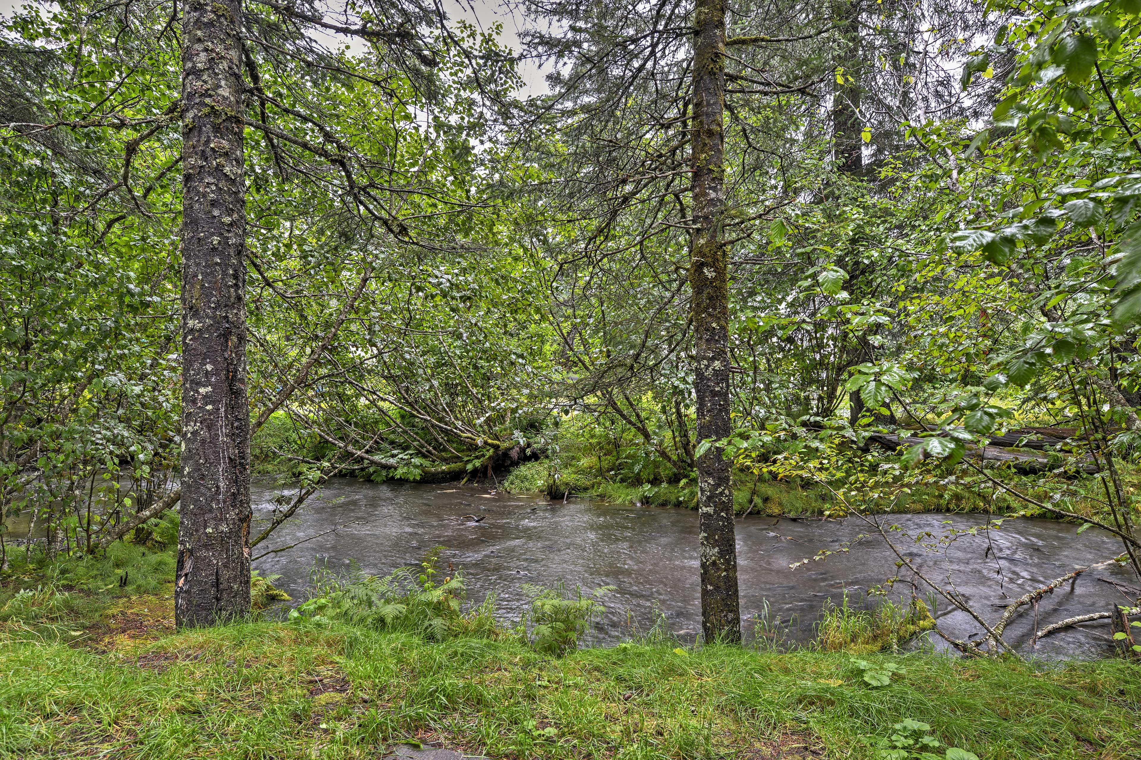 Spend your days exploring the Alaskan frontier for your next getaway!