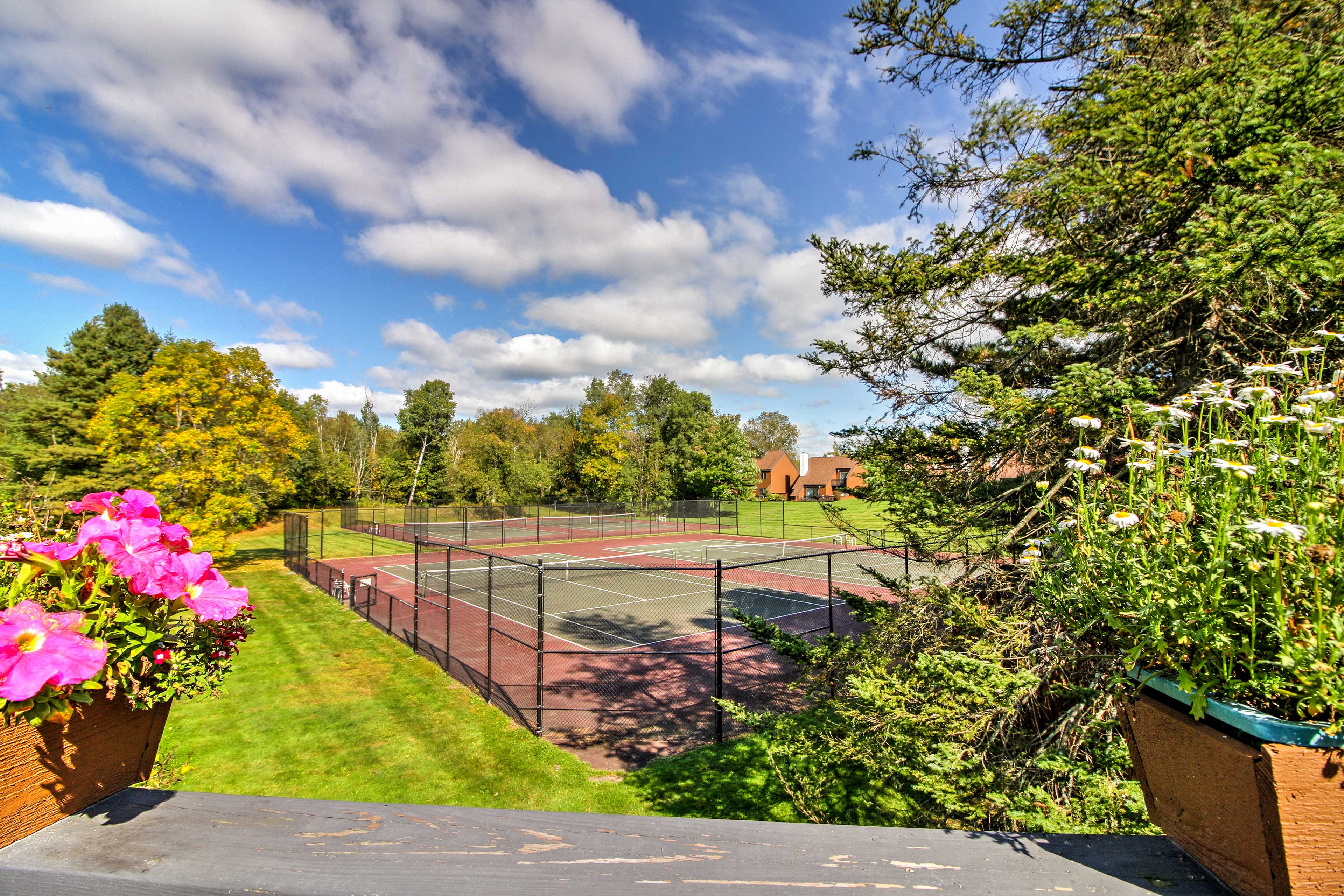 Challenge a partner to a friendly game of tennis!