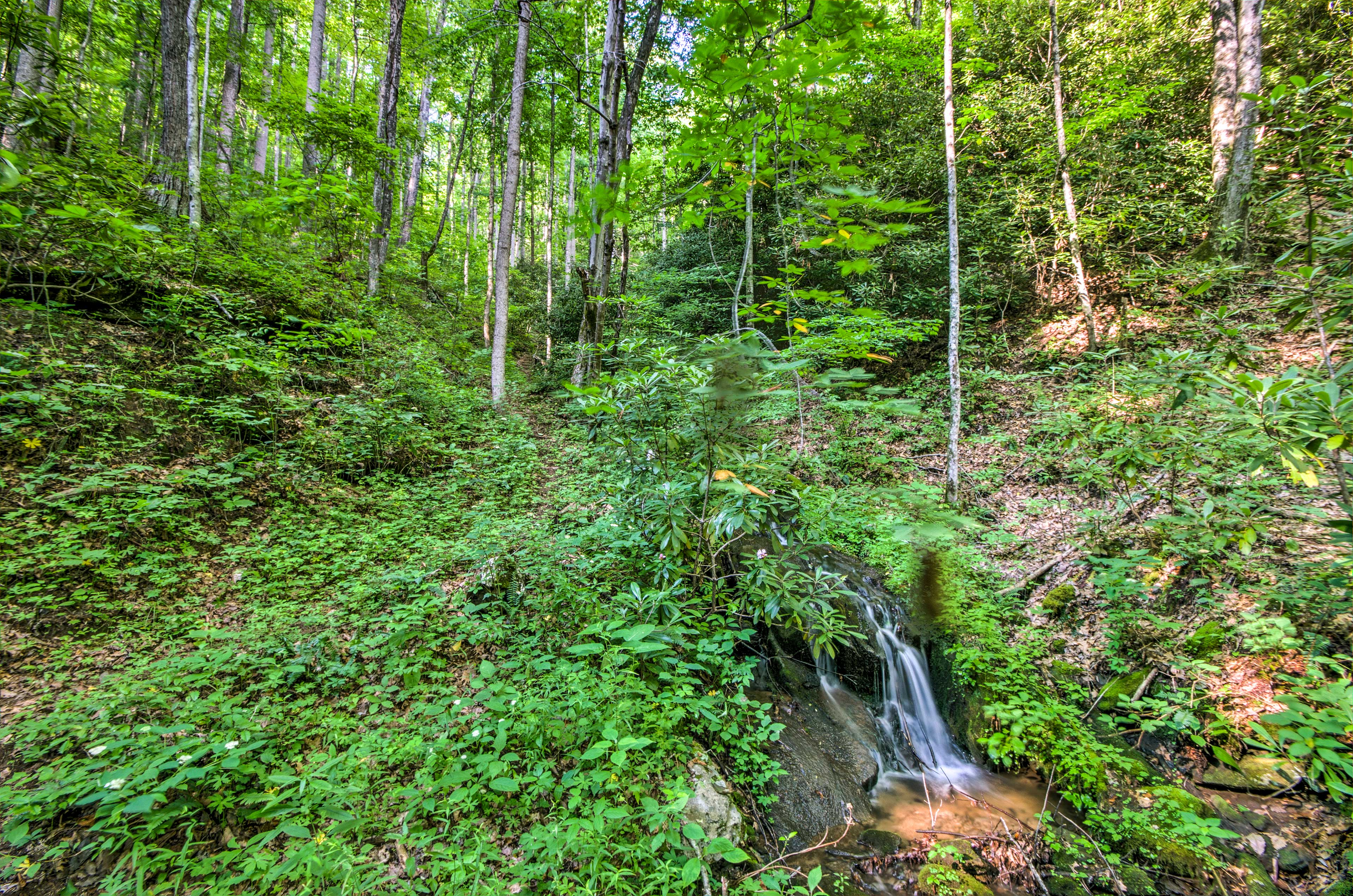 Become one with nature at this Smoky Mountain escape!