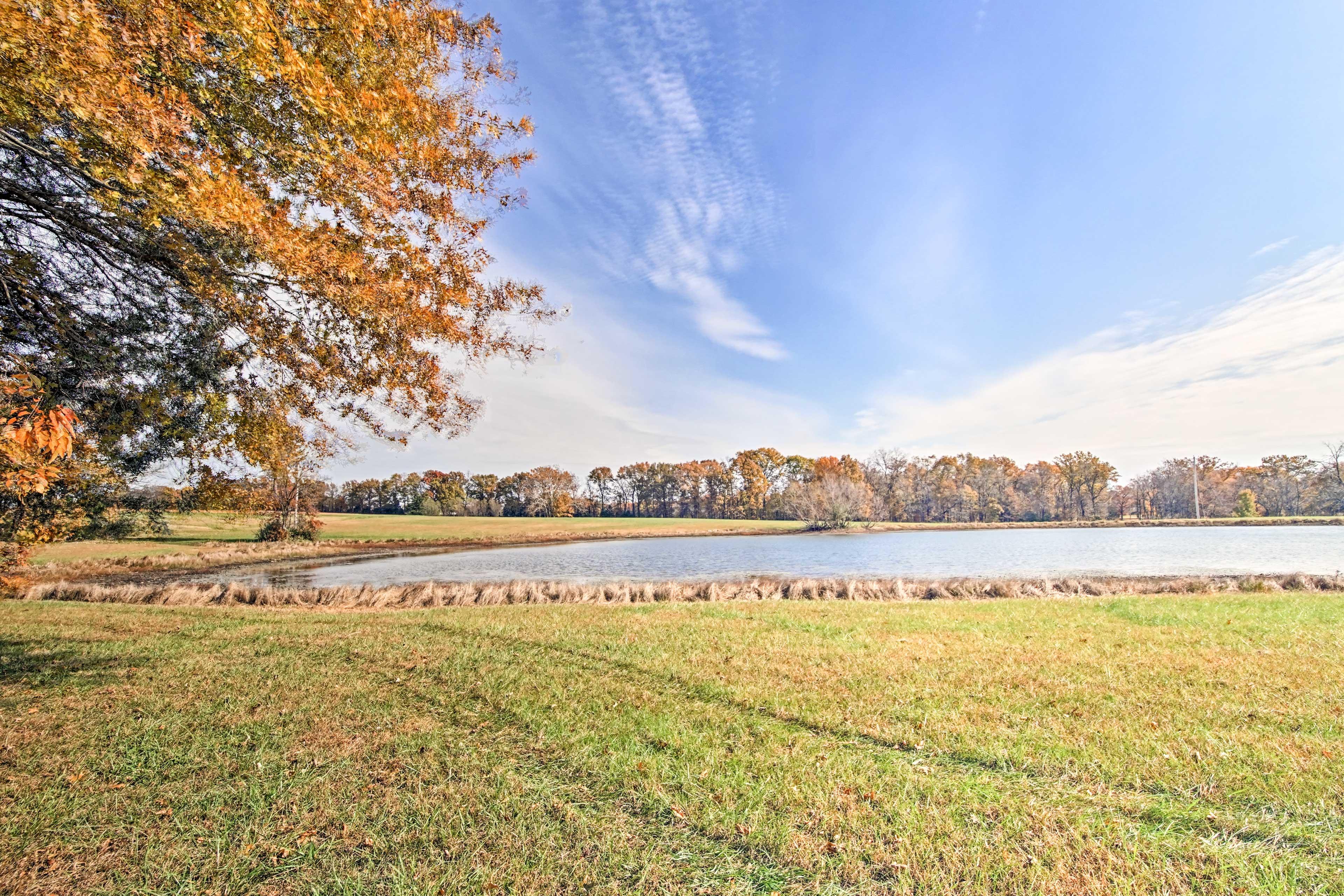 Go fishing, boating, or paddle boating on Newman Lake!