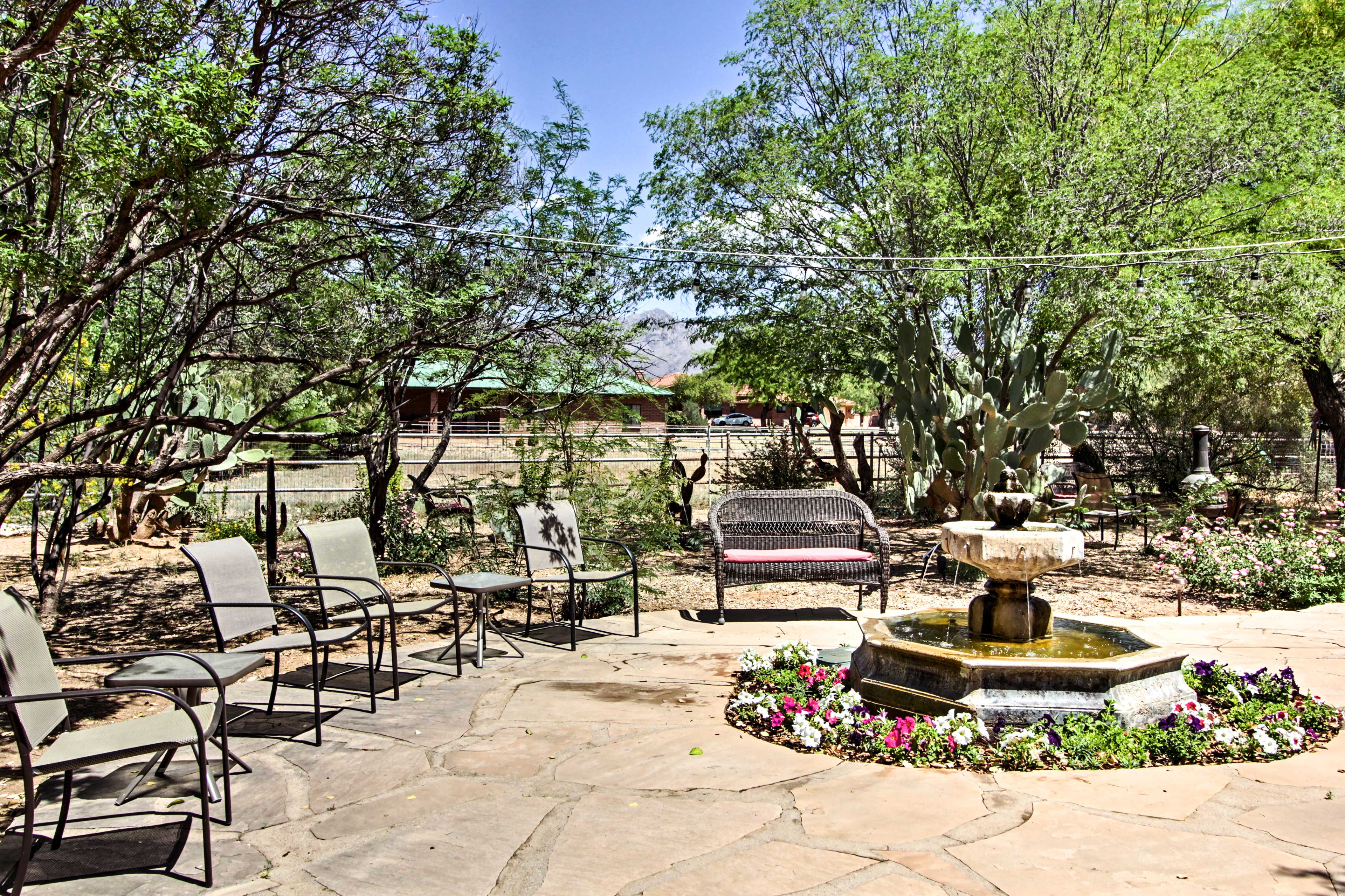 Take in Arizona's beauty from this 1-bed, 1-bath vacation rental home in Tucson!