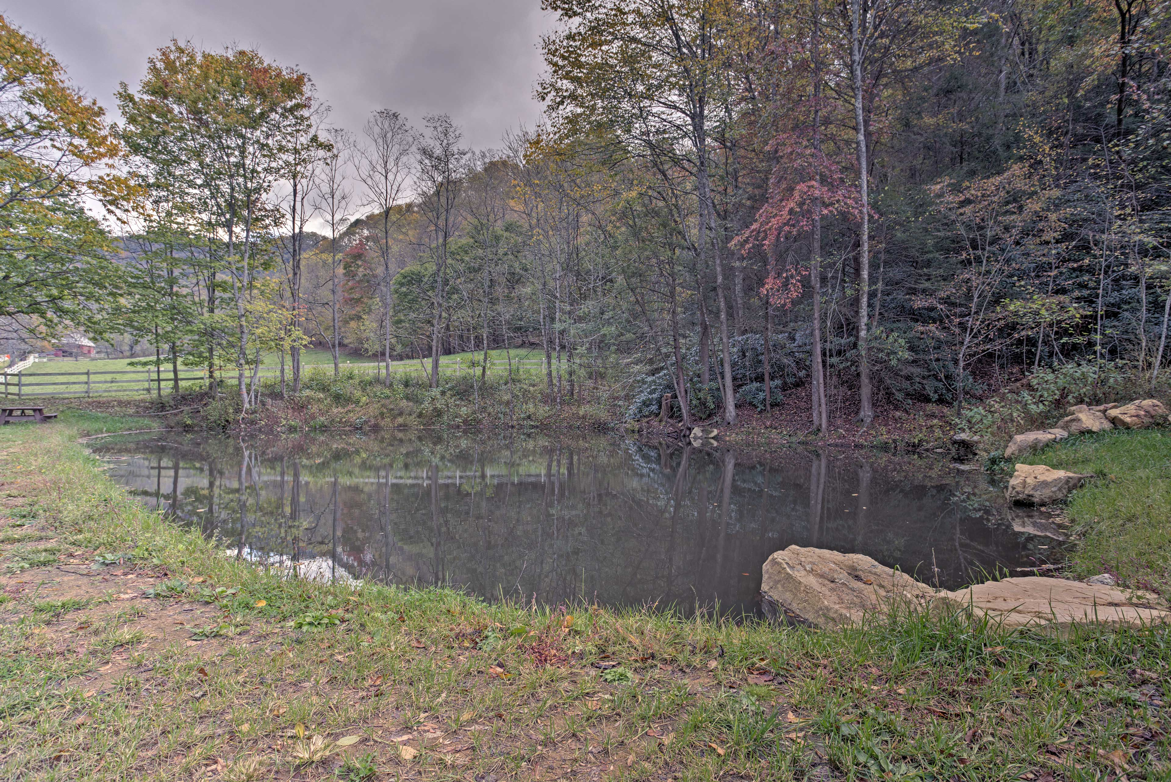 Skip rocks along the calm pond.
