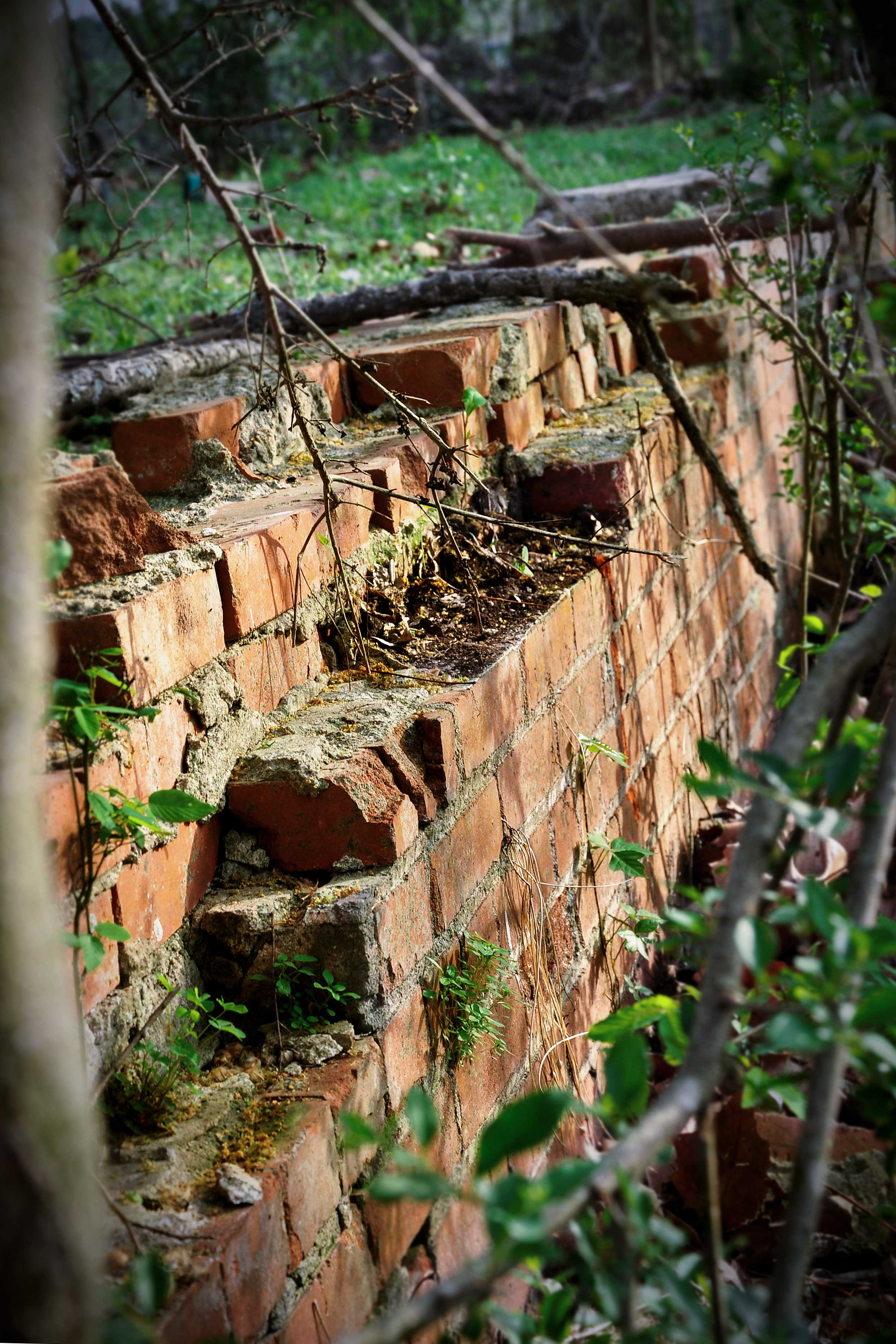 Old ruins remain untouched on the property.