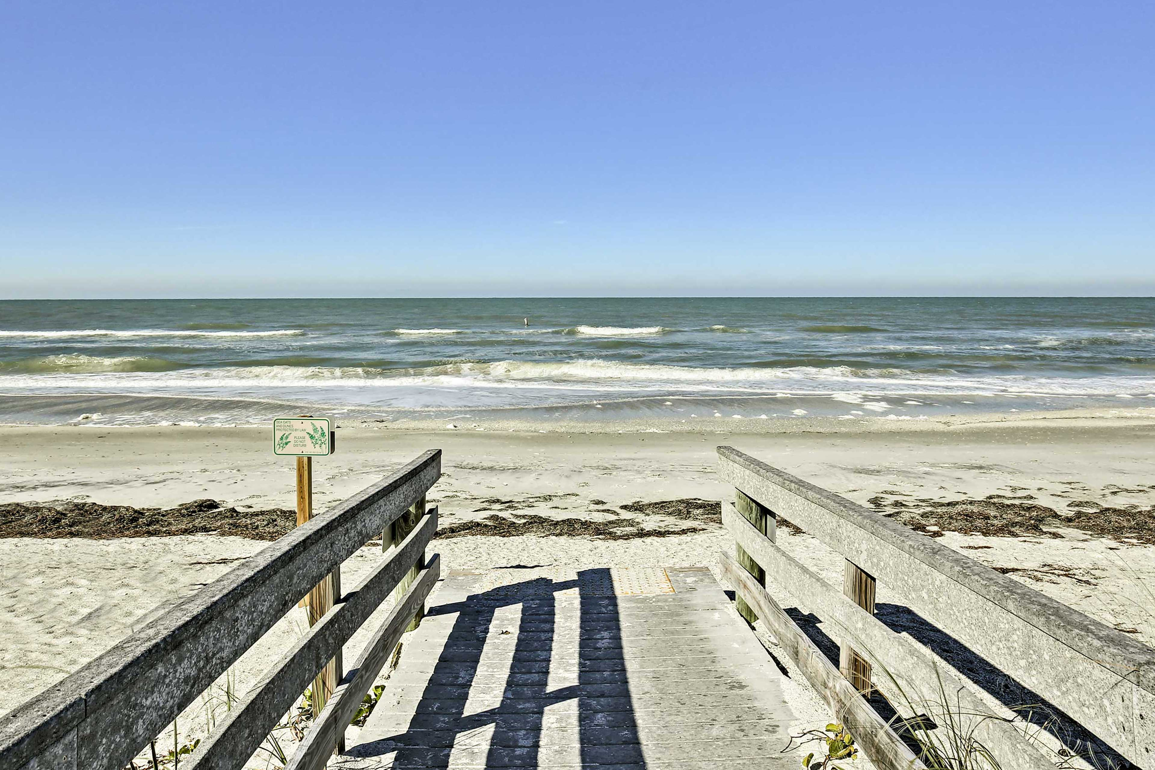 Take a walk down to Indian Rocks Beach for a full Florida experience!