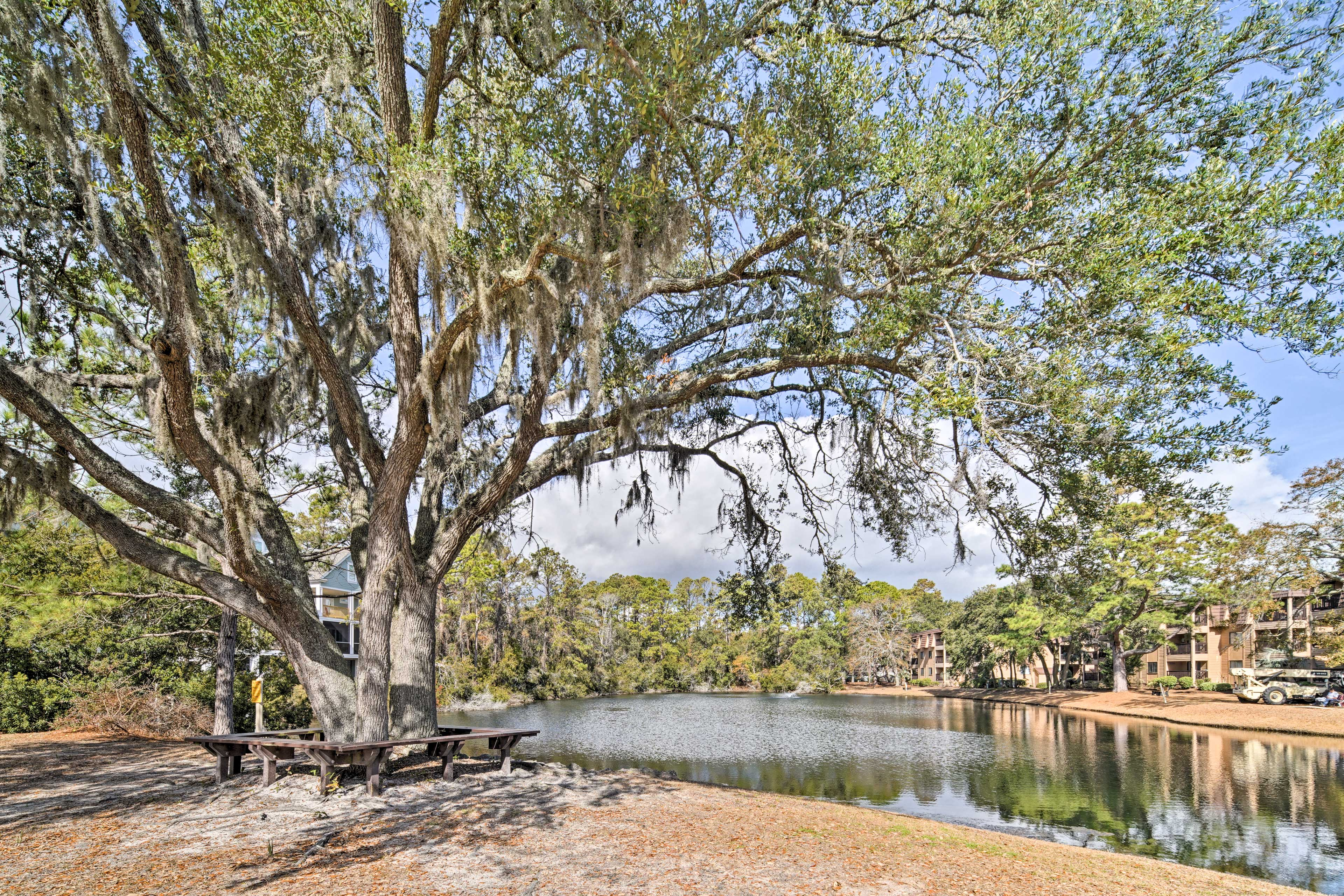 You'll be treated to picture-perfect scenery throughout Hilton Head Island.