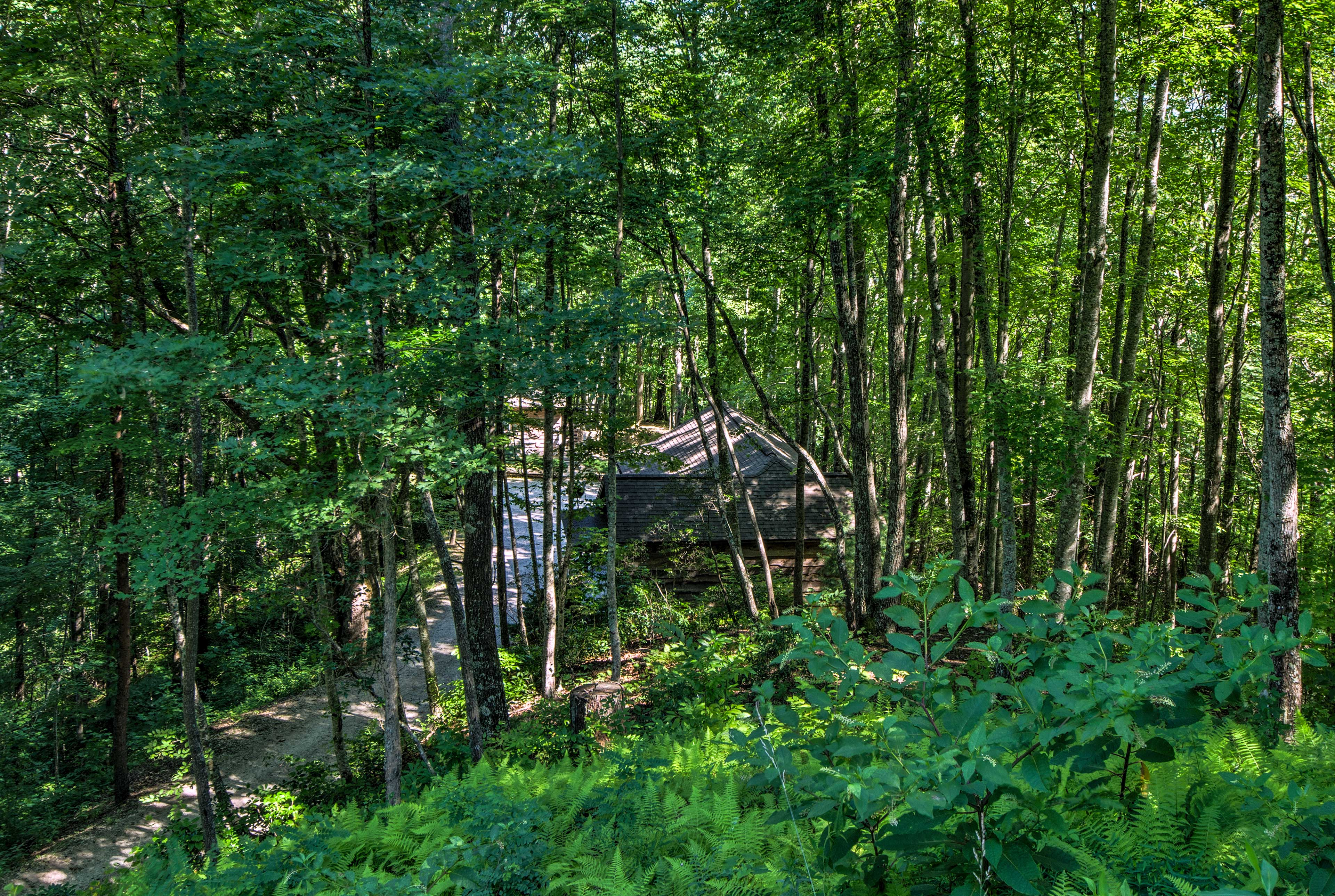 This cabin is in a prime spot for any and all outdoor adventures.