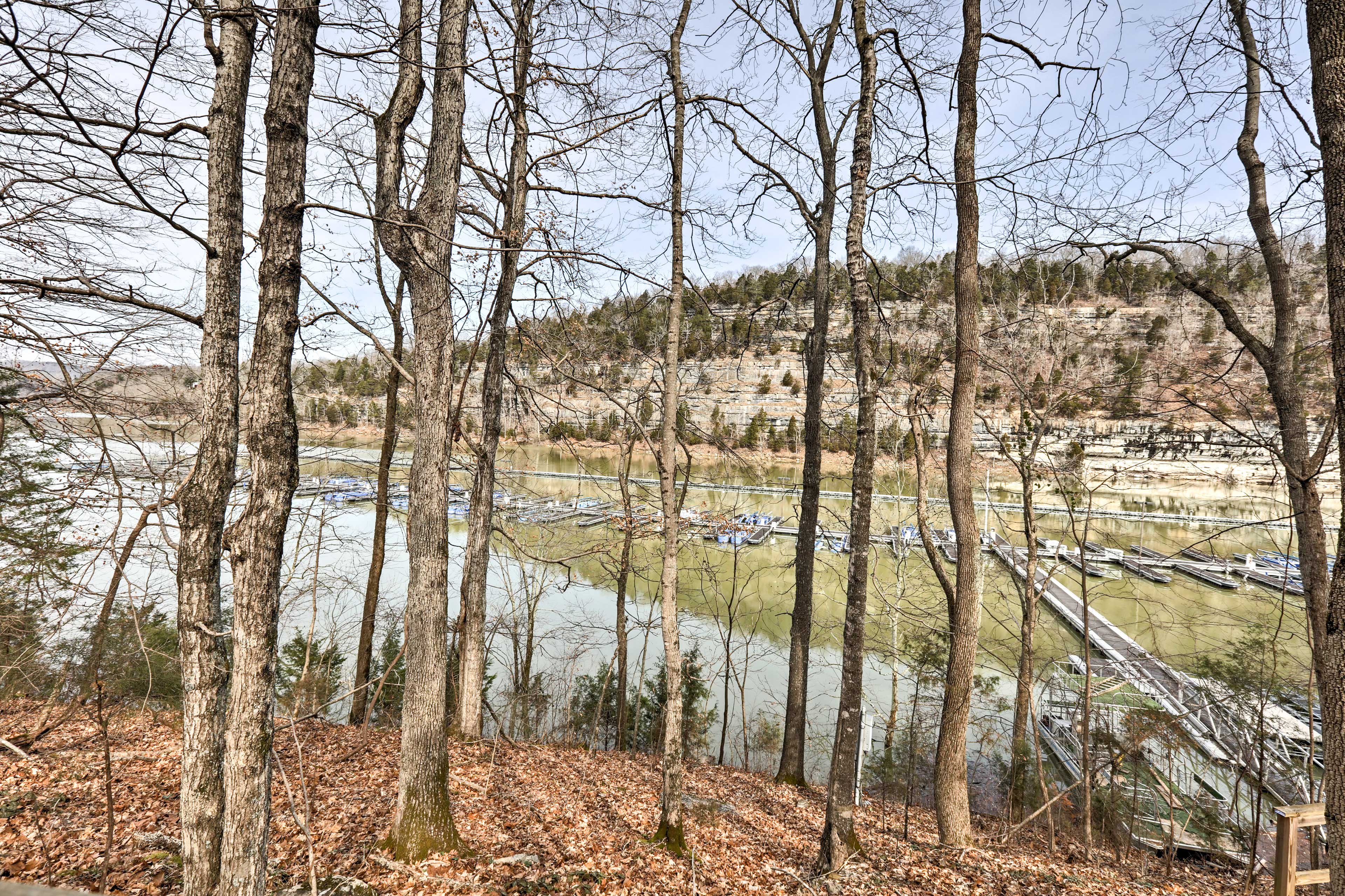 Over the river and through the woods...are lovely Lake Cumberland views!