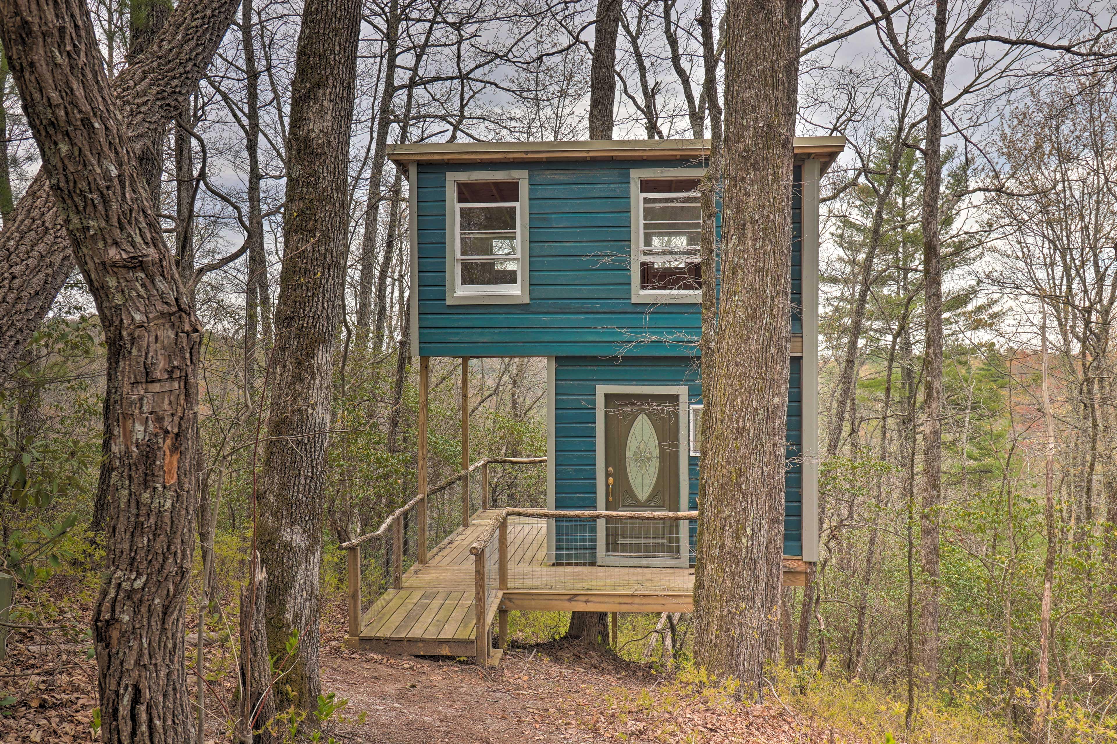 Exterior   Brand New Tree House