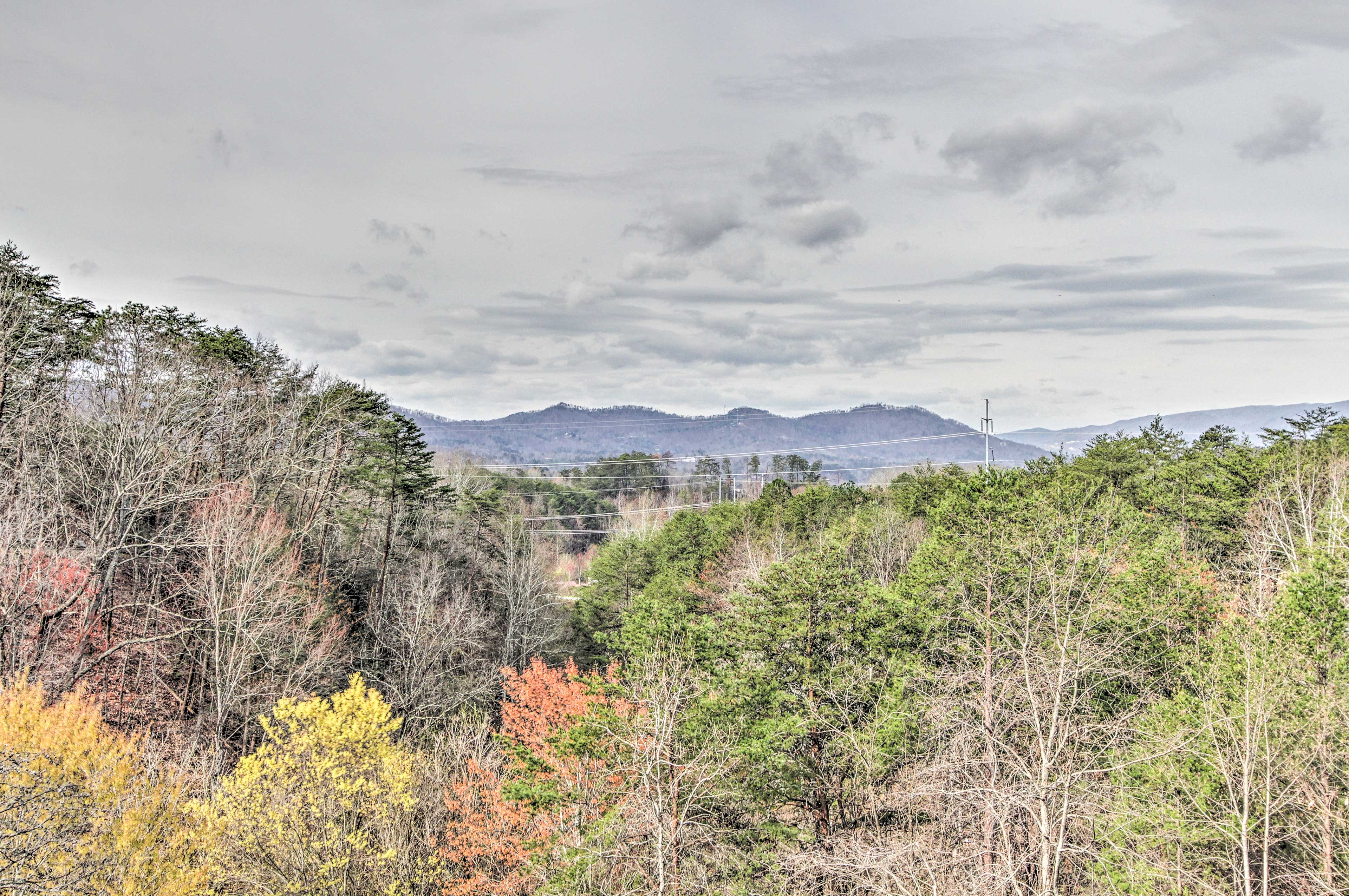 This sweet spot is surely one of the best in the heart of Tennessee!