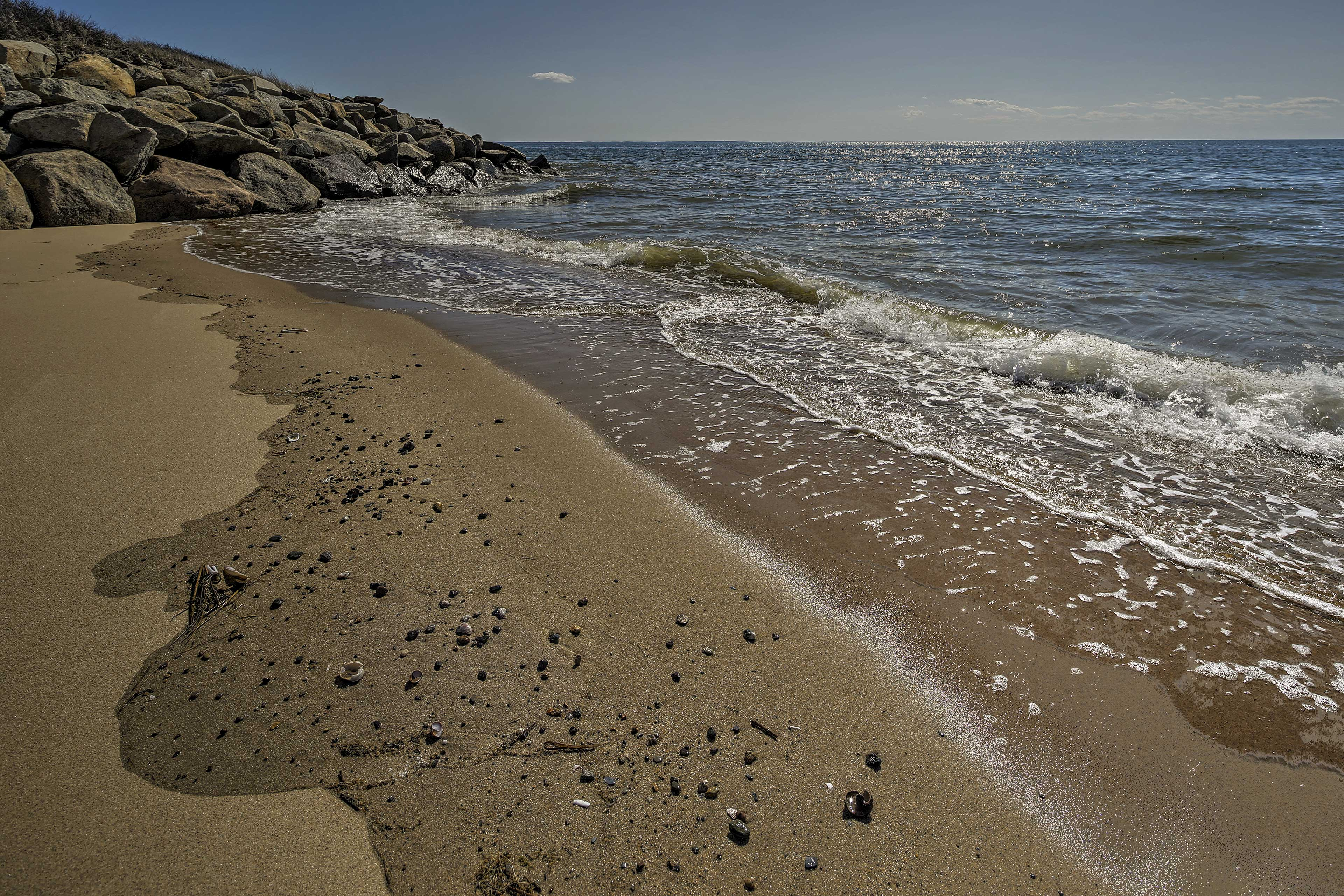 Experience all the splendors of Cape Cod Bay from 'Seawatch!'