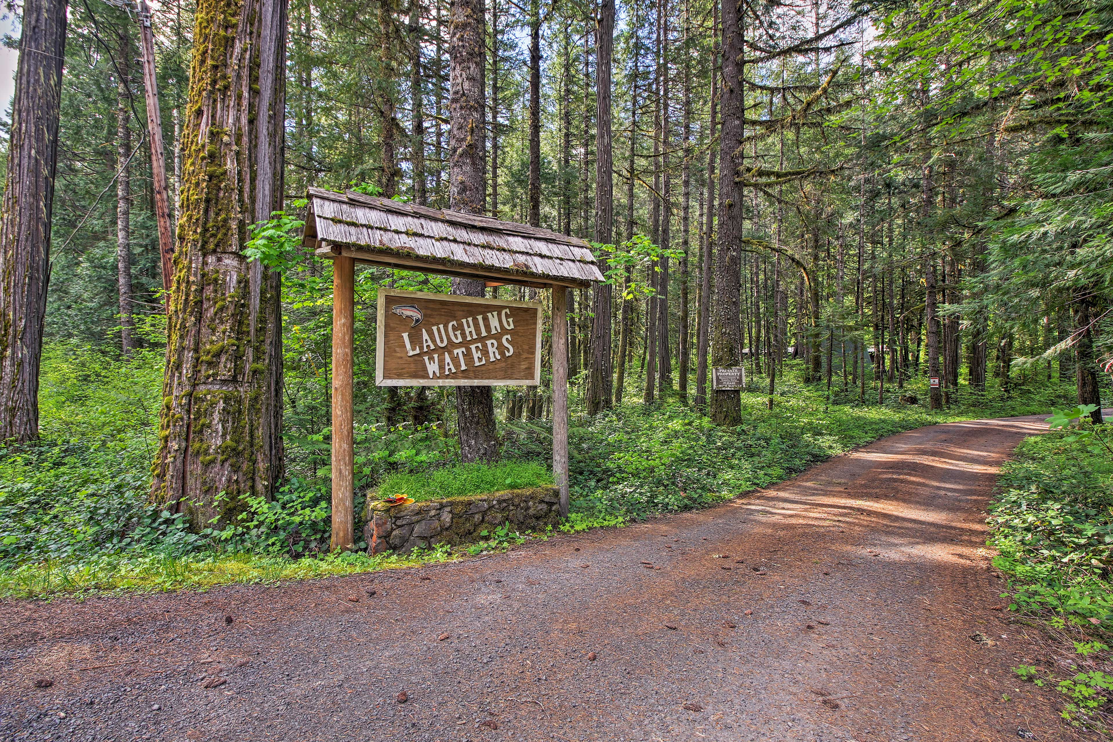 Instead of a red carpet, western red cedar trees welcome your arrival.
