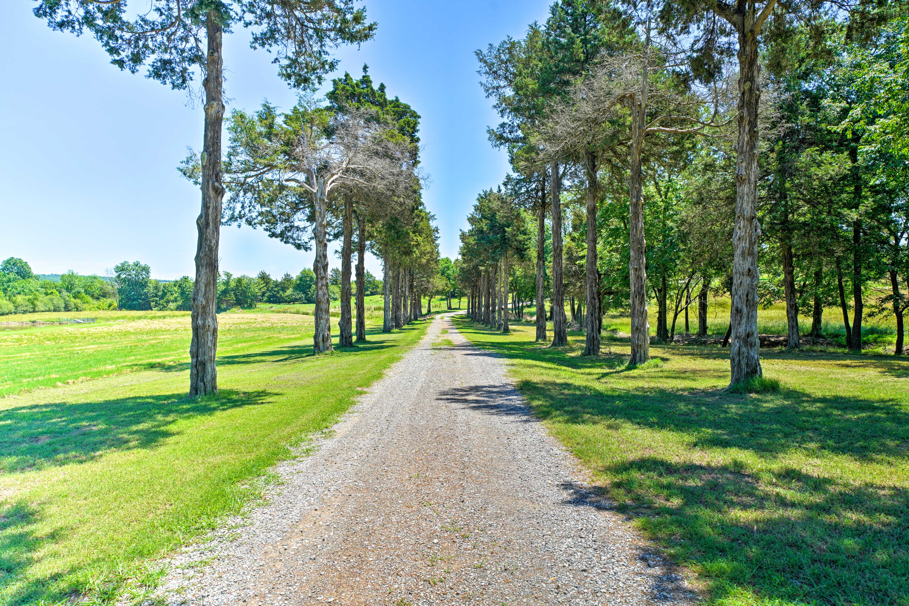 Cedar trees line the drive and welcome you to your vacation cottage.