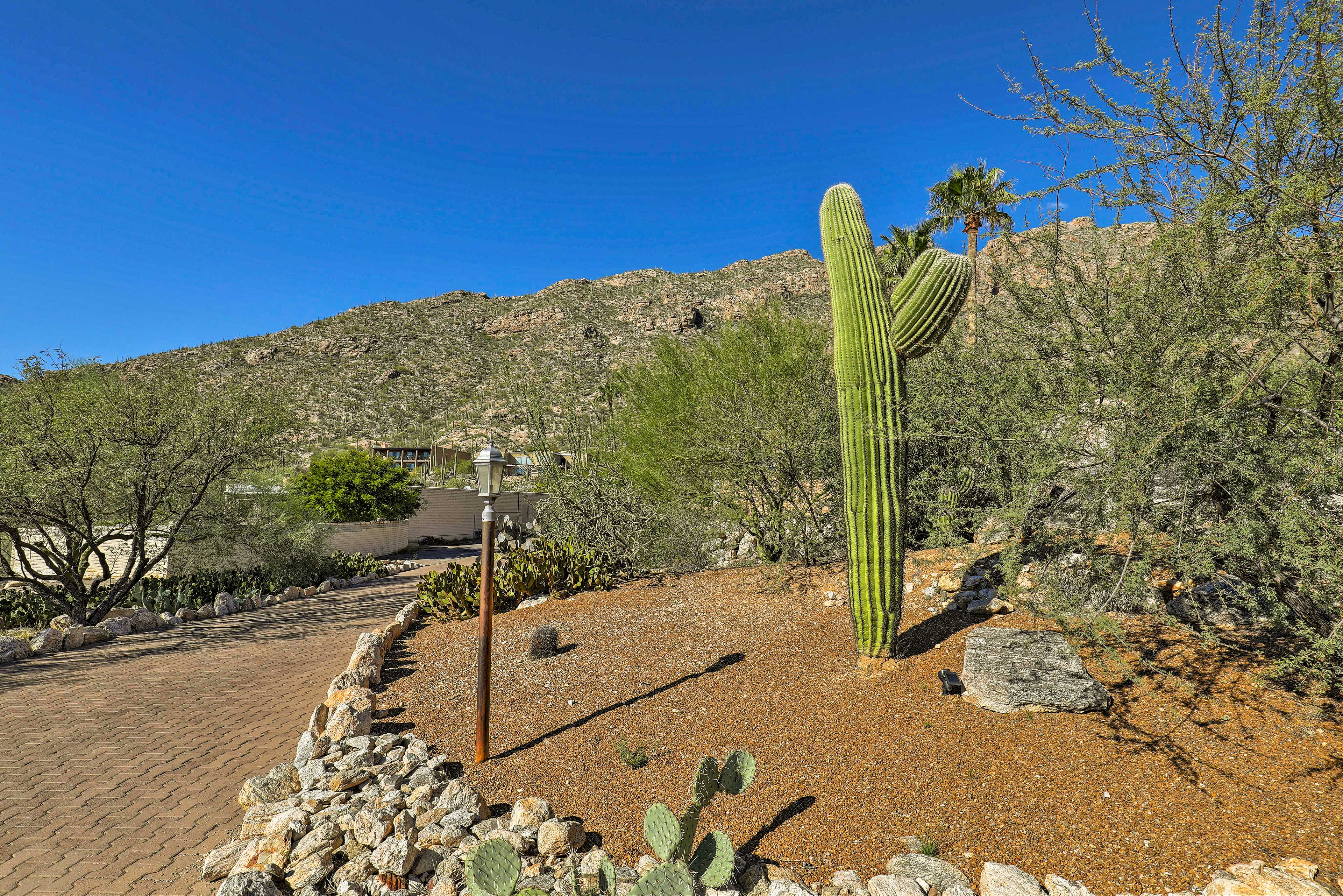 Views of the mountains and saguaro cacti are sure to impress.