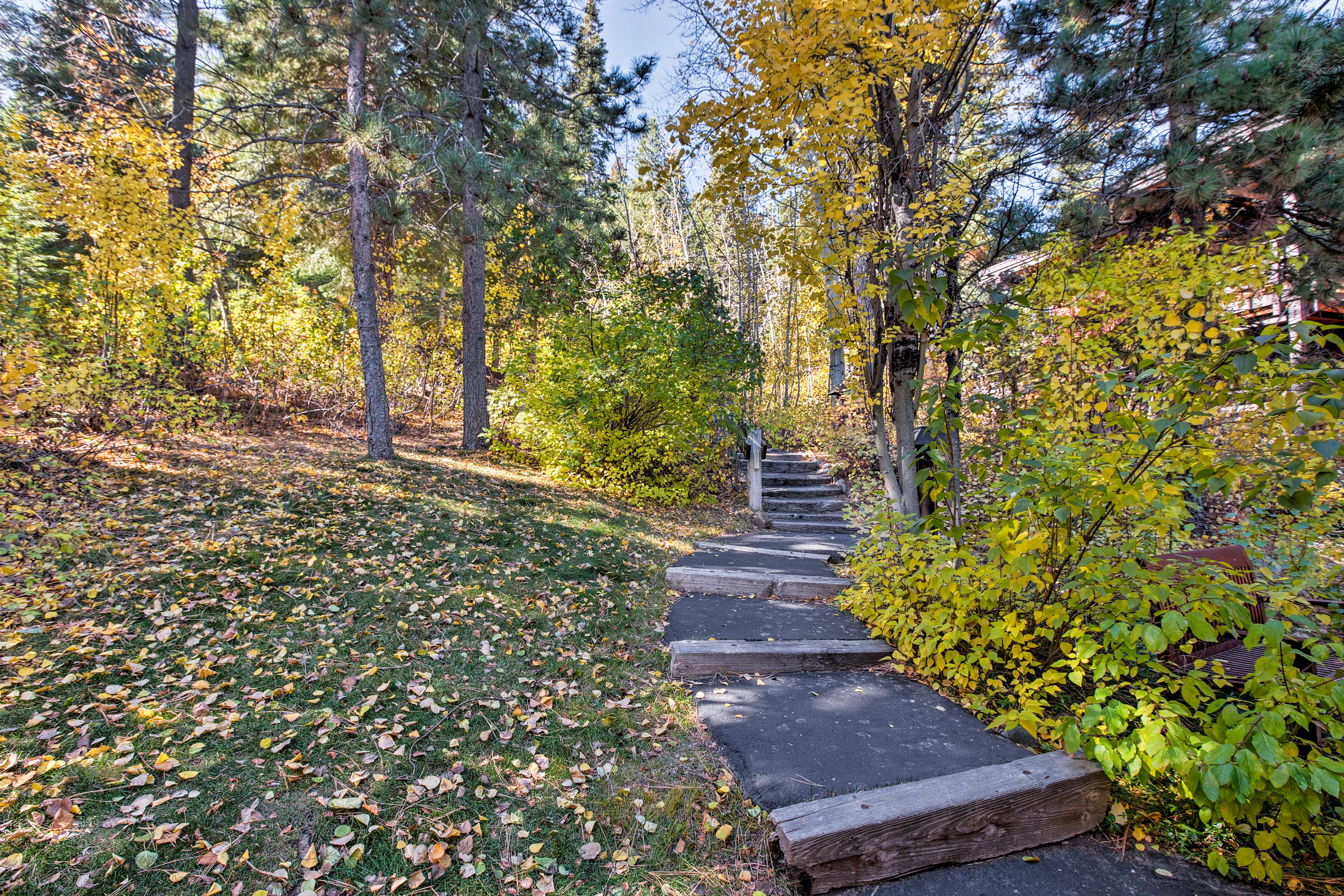 Hiking paths lead right from the property.
