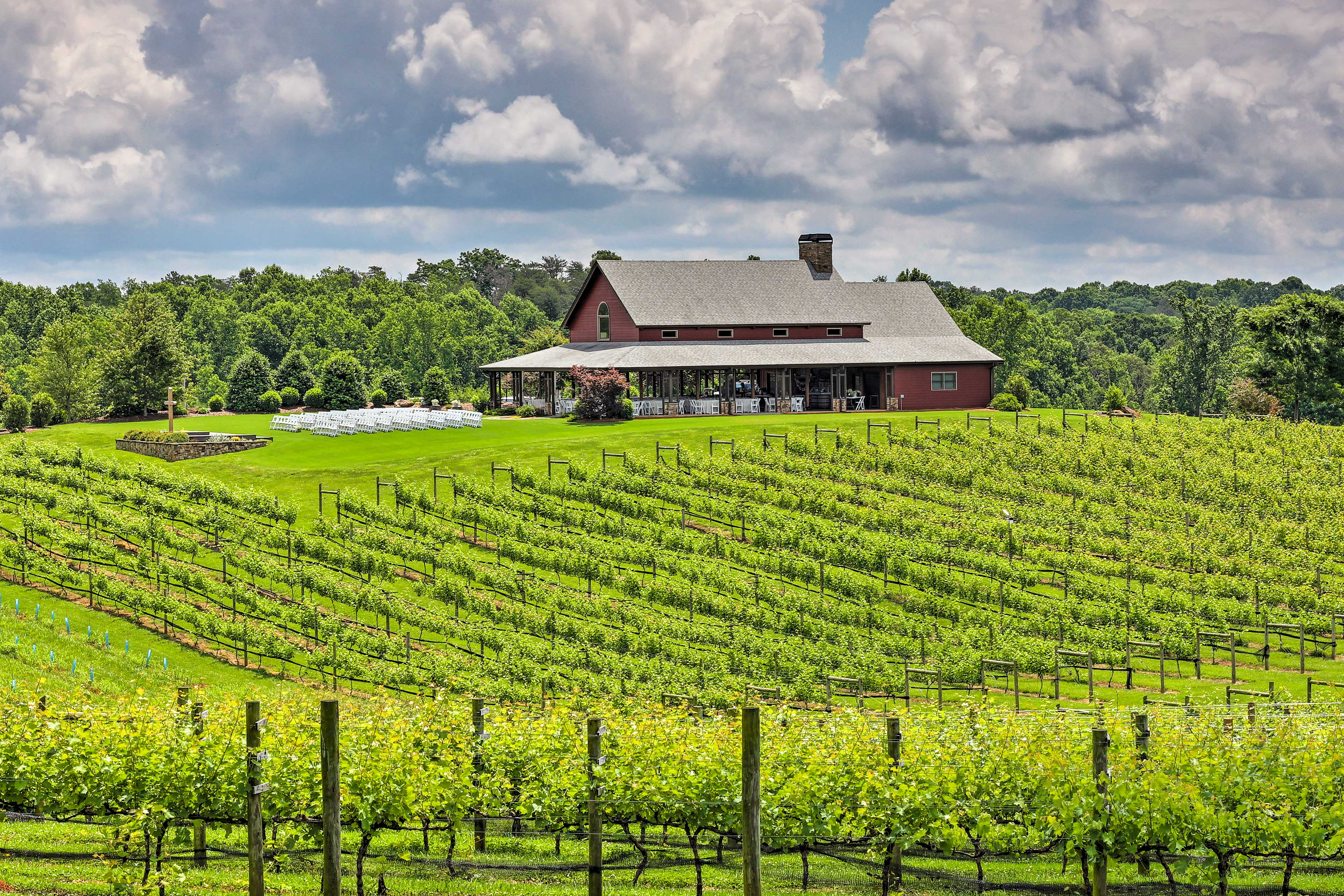 CeNita Vineyards is located minutes from the property.