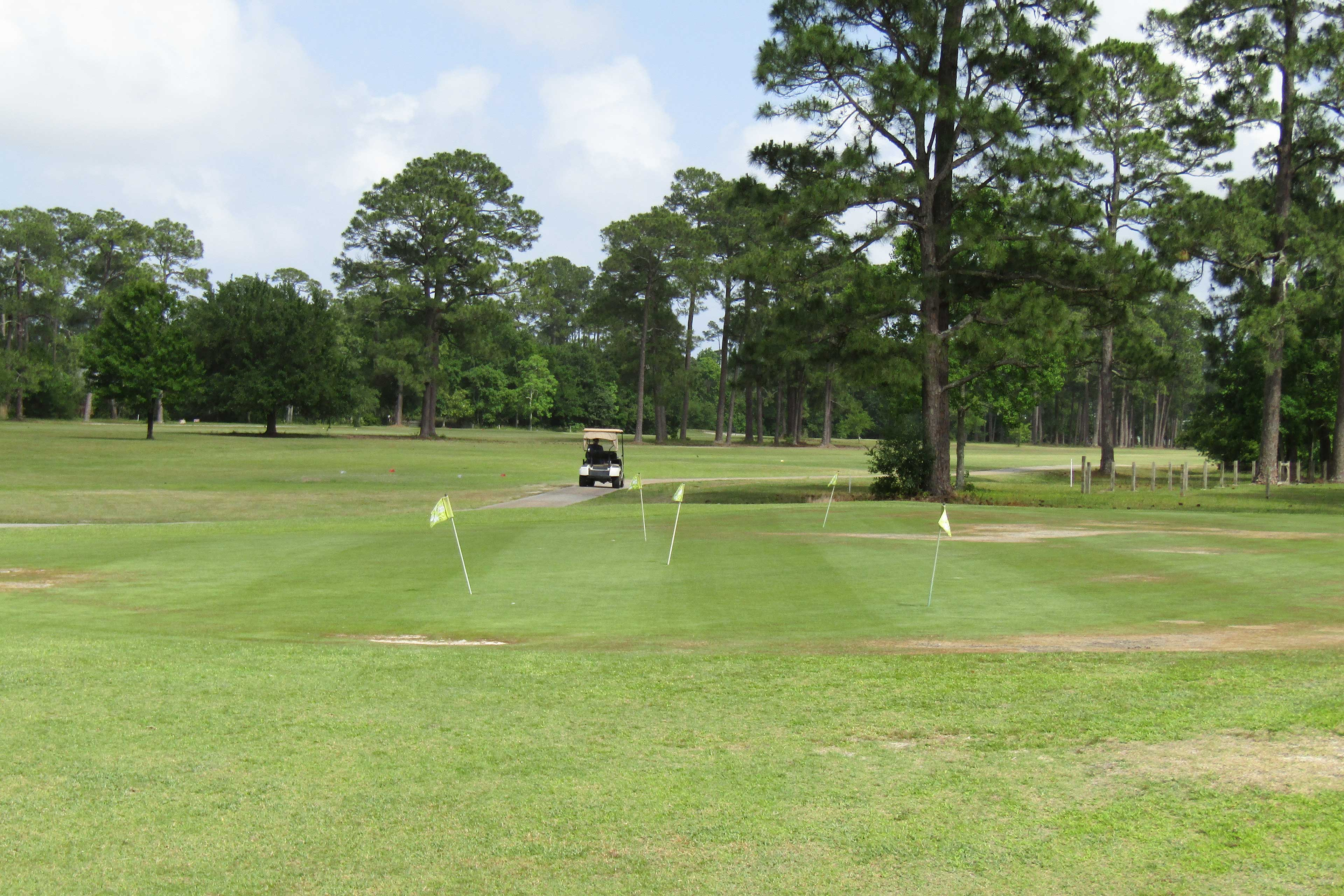 Book a tee time at a nearby course and drive a golf cart along the fairways.