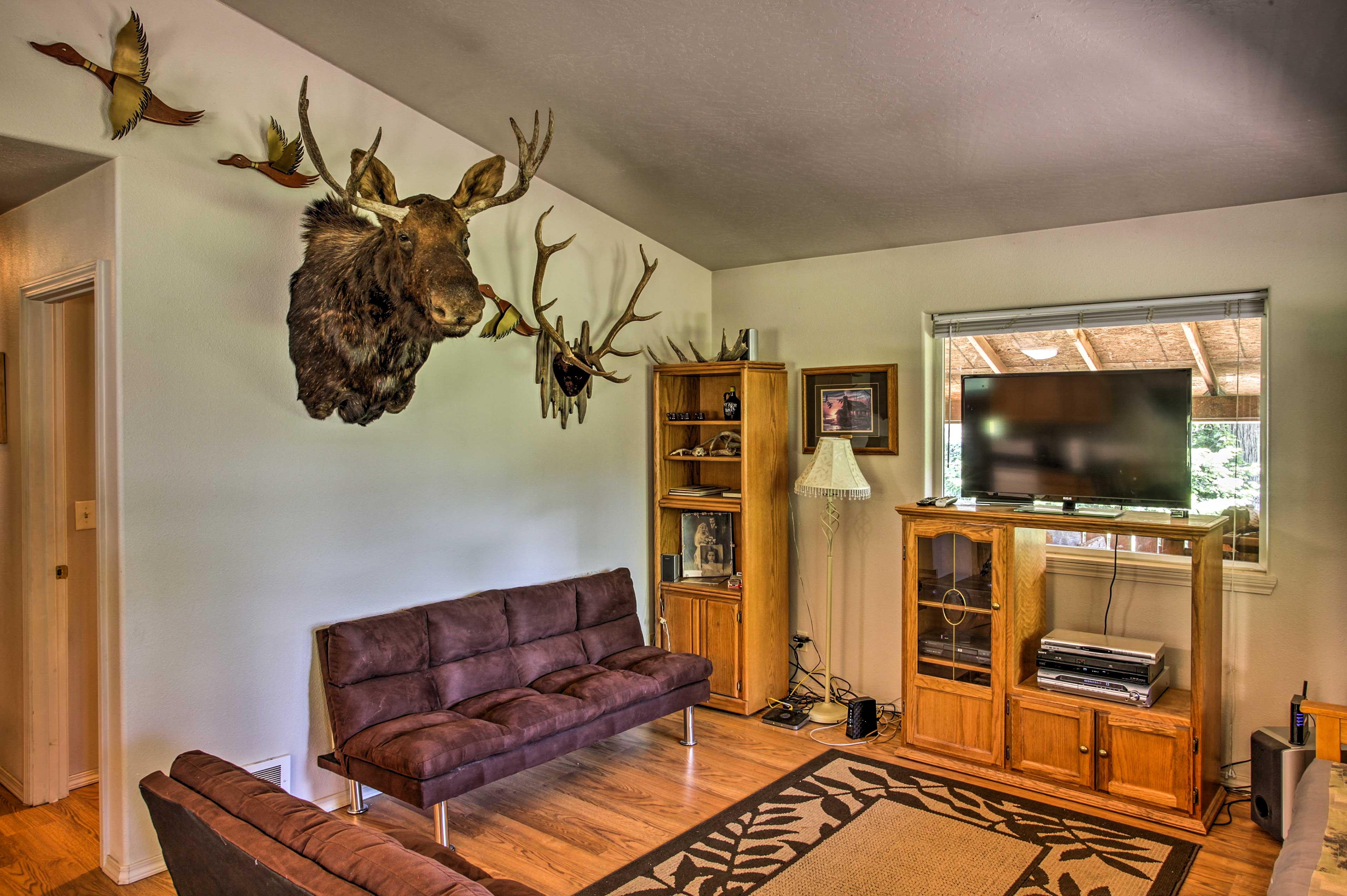 Living Room   2 Futons   Satellite TV