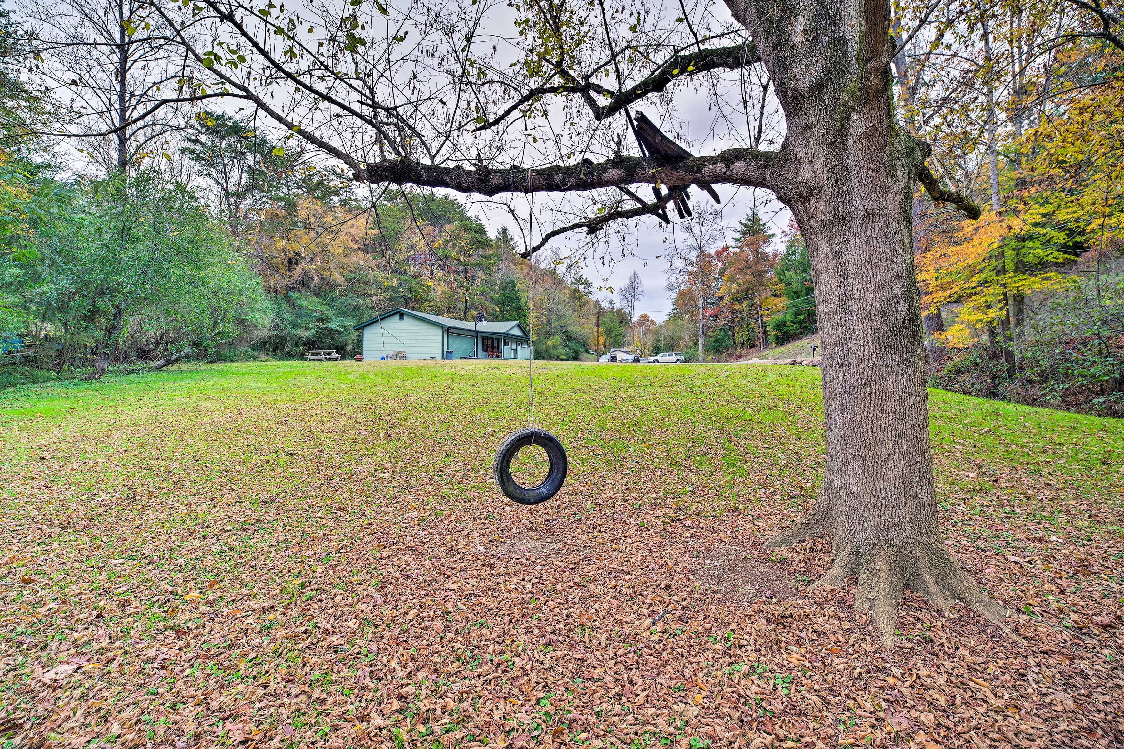The kids will love the tire swing.