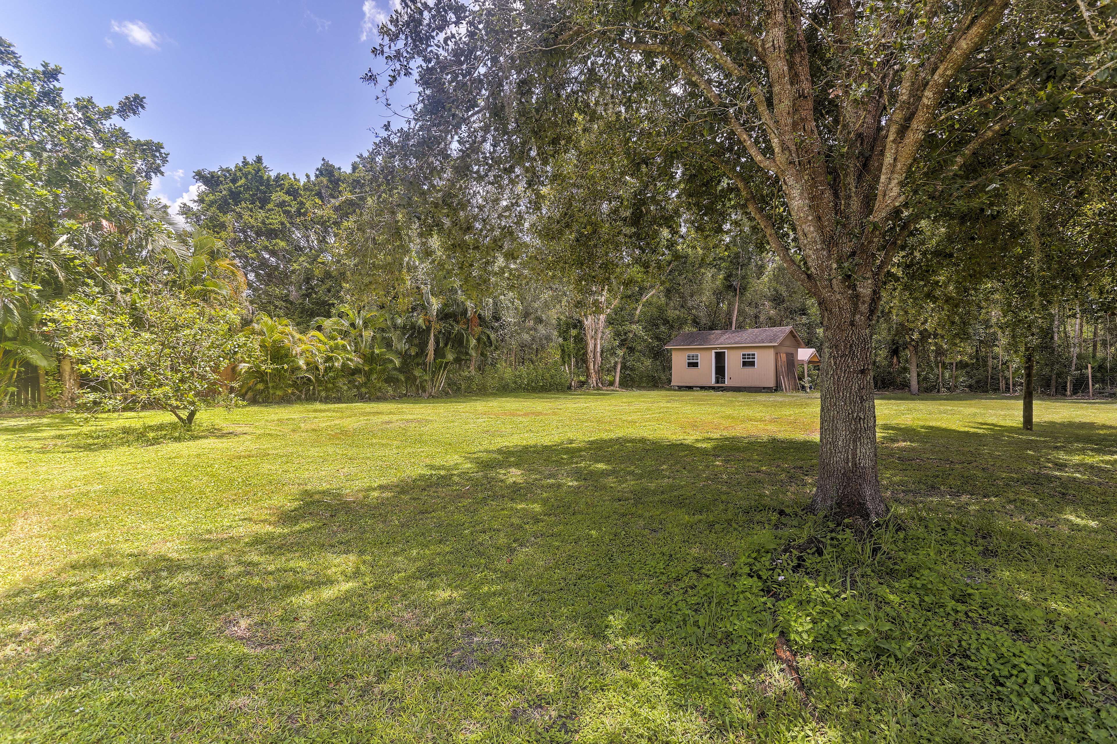 Private Backyard | Privacy